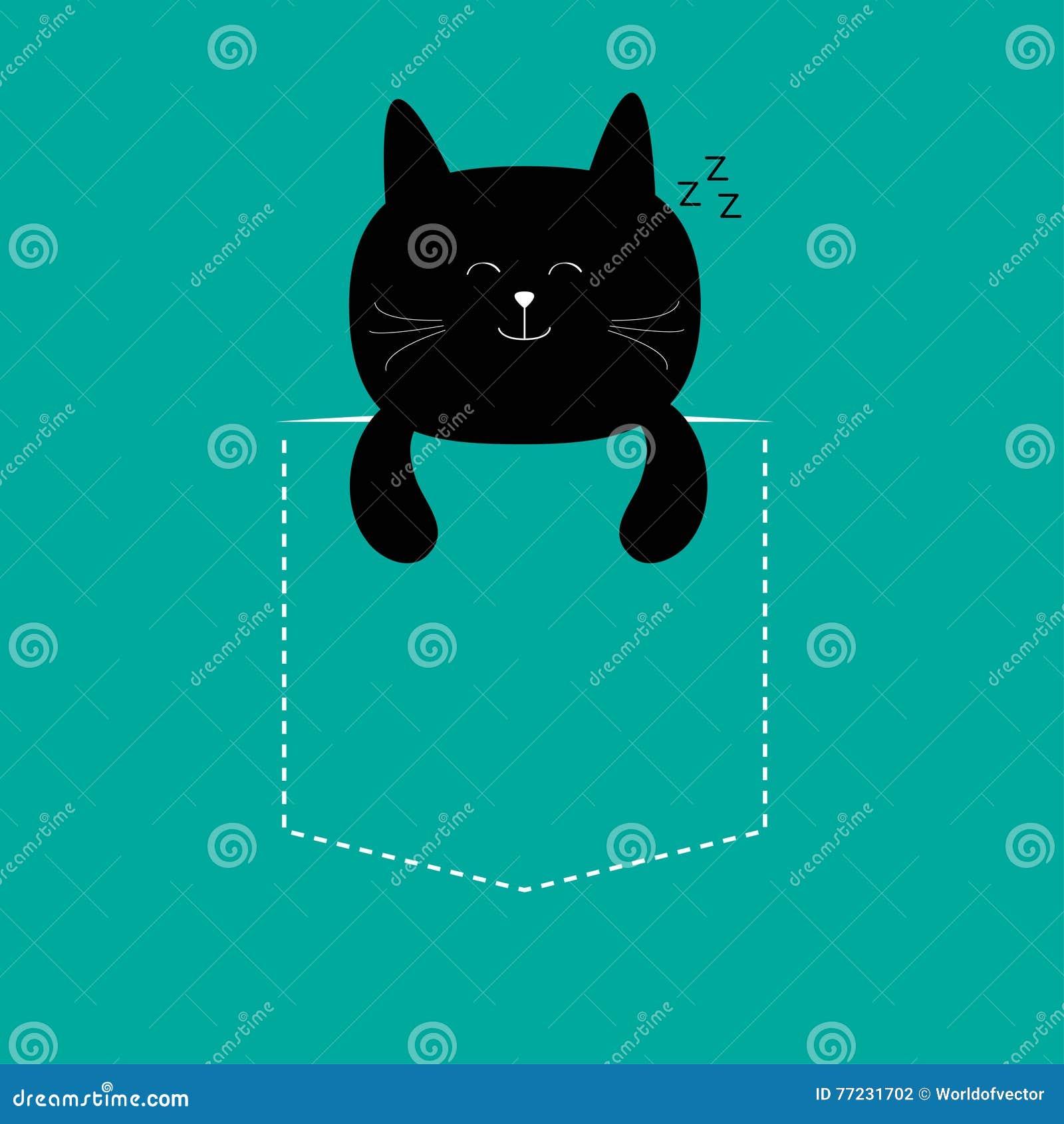Кот му