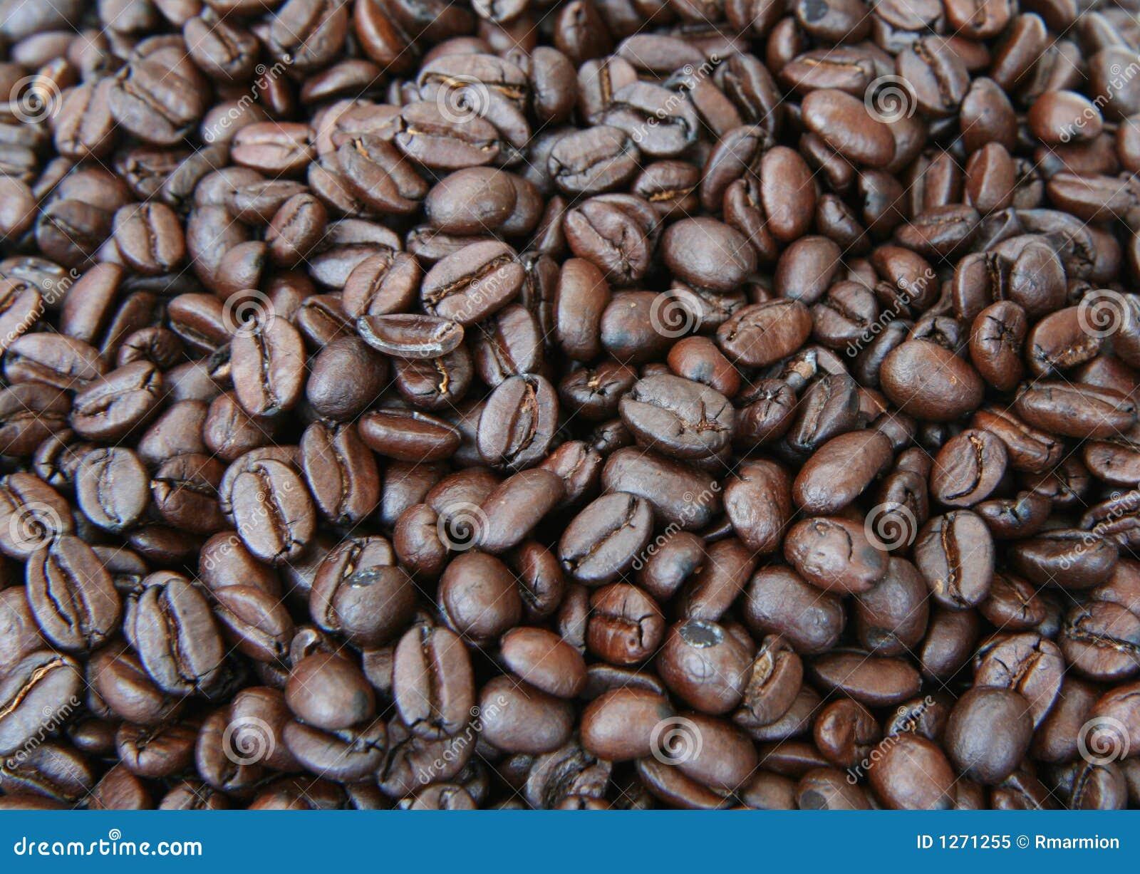 кофе фасолей предпосылки