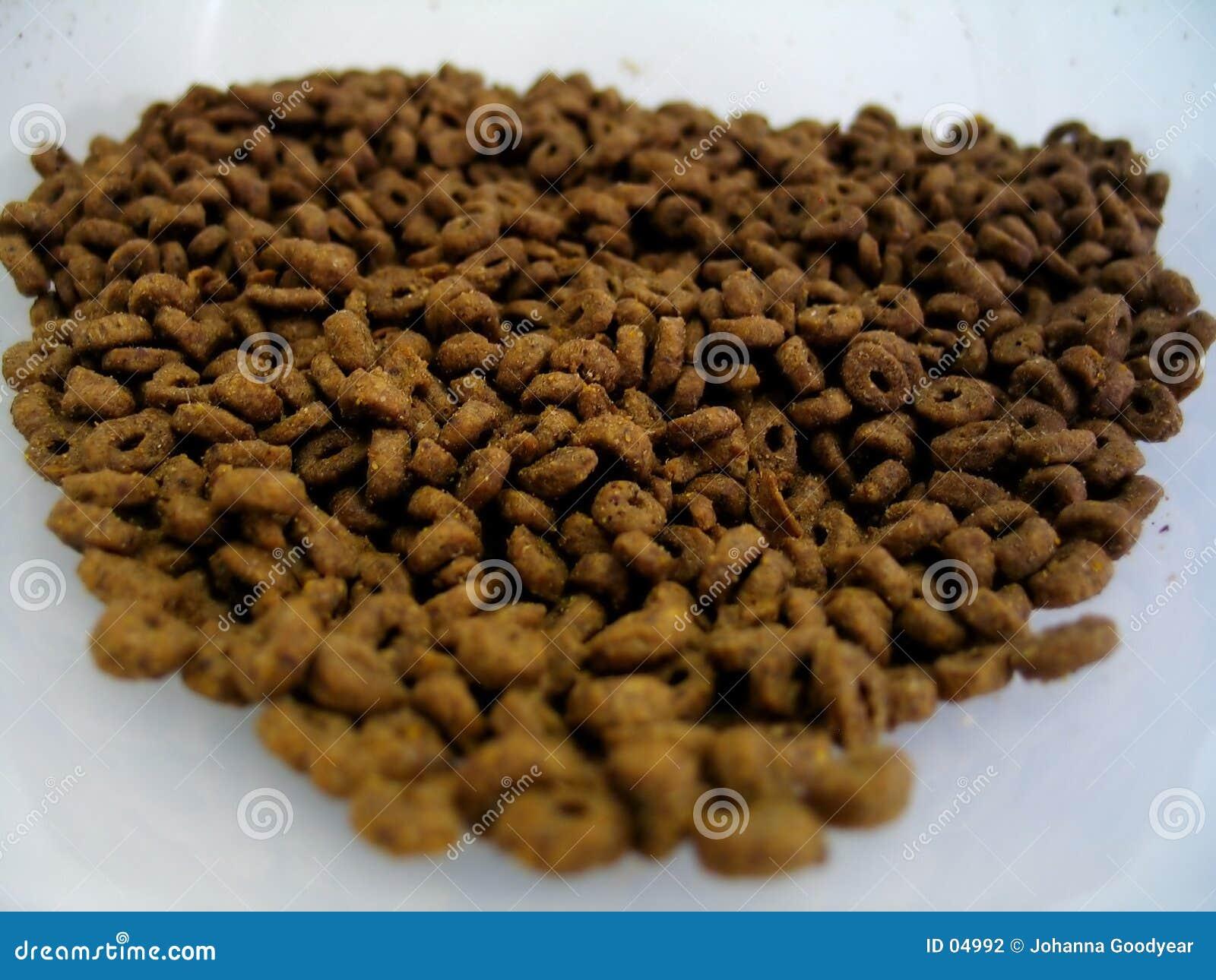 кошачья еда