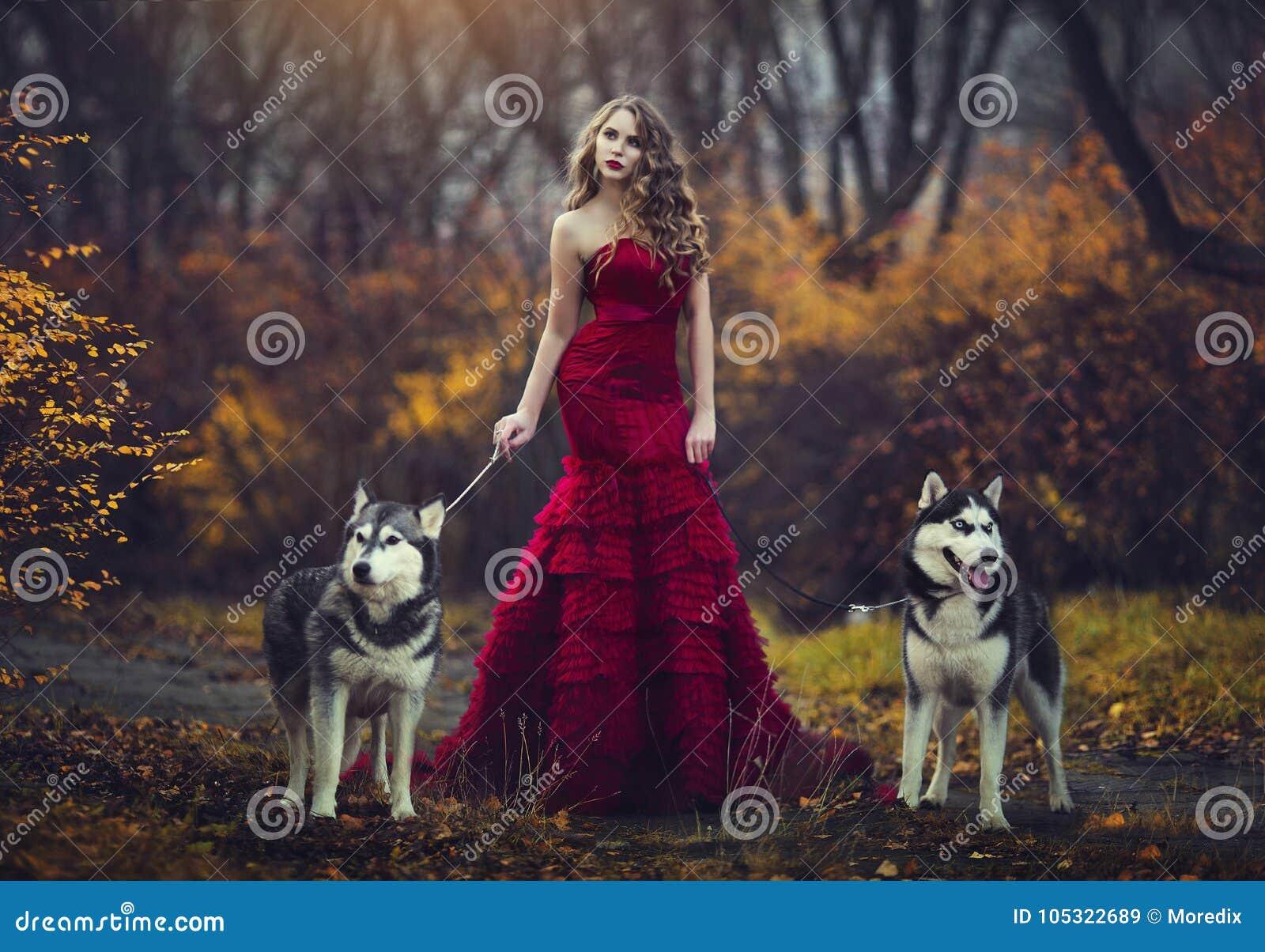 Красивая белокурая девушка в шикарном красном платье, идя с 2 осиплыми собаками в лесе осени