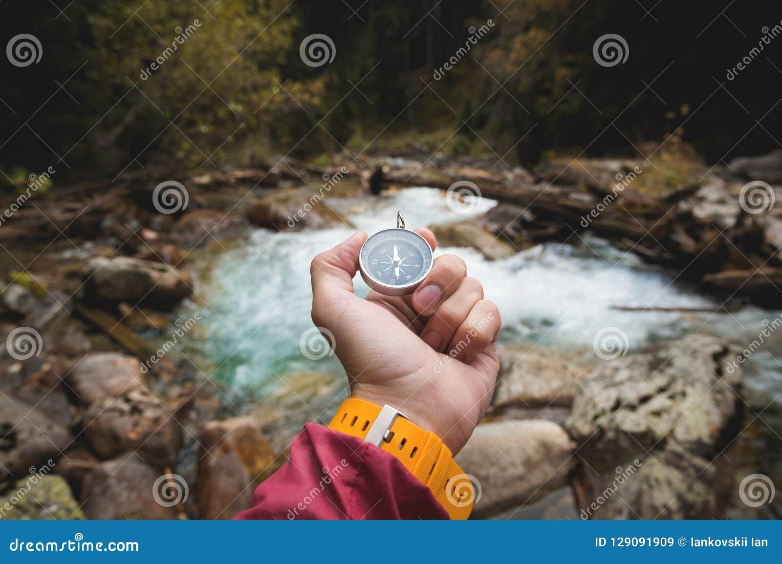 Красивая мужская рука с желтым ремешком держит магнитный компас в coniferous лесе осени против a