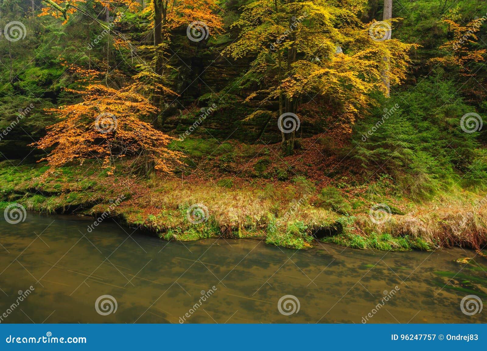 Красивая осень красит реку