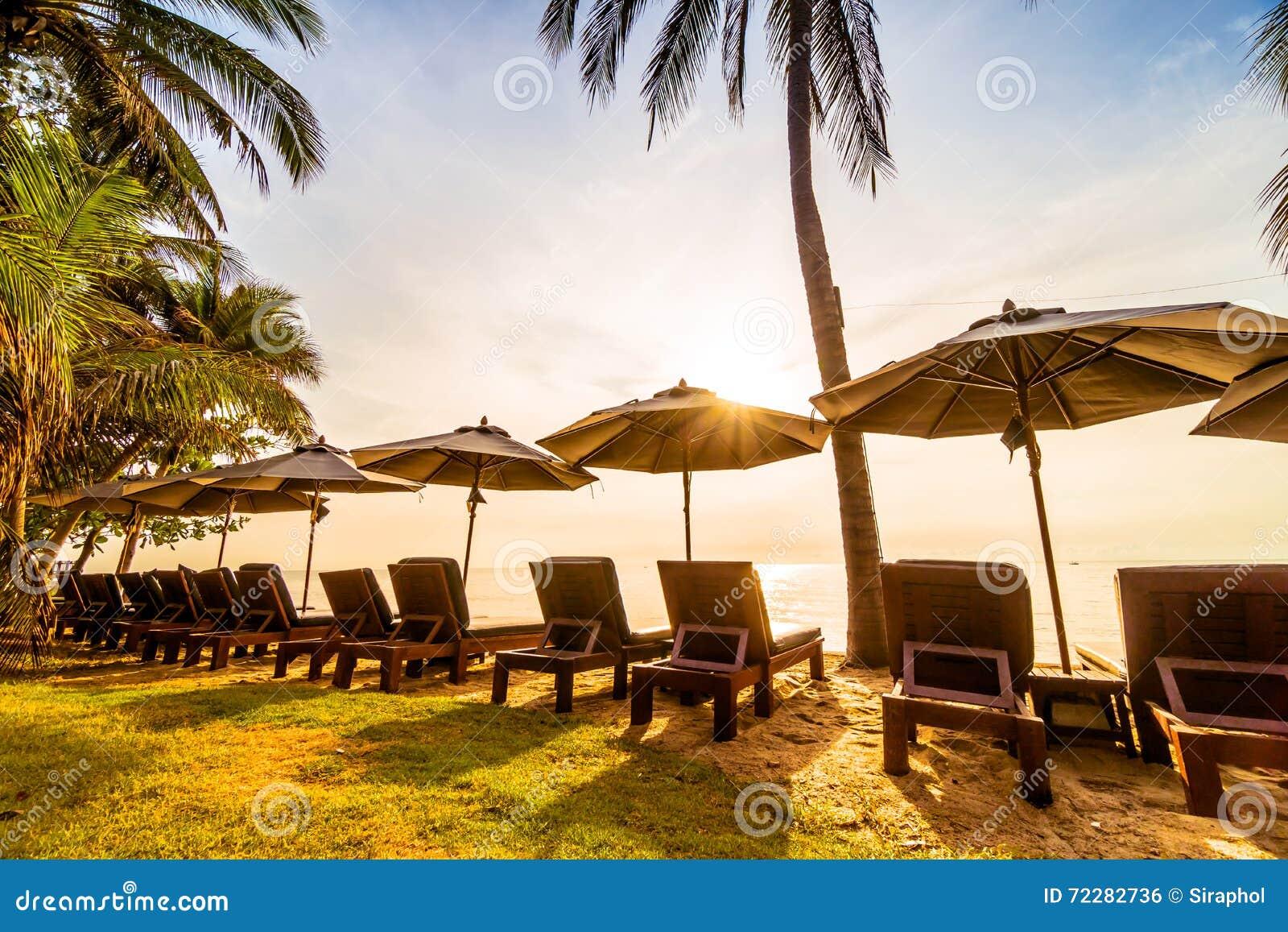 Download Красивая пальма кокоса на пляже и море Стоковое Фото - изображение насчитывающей sunset, кокос: 72282736