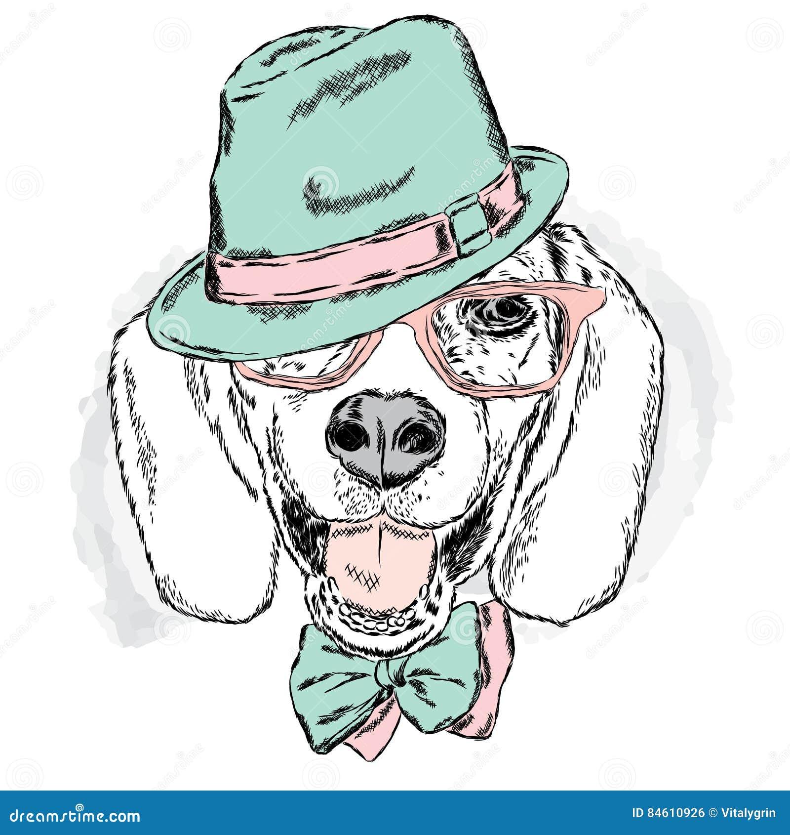 Собака в шляпе открытка