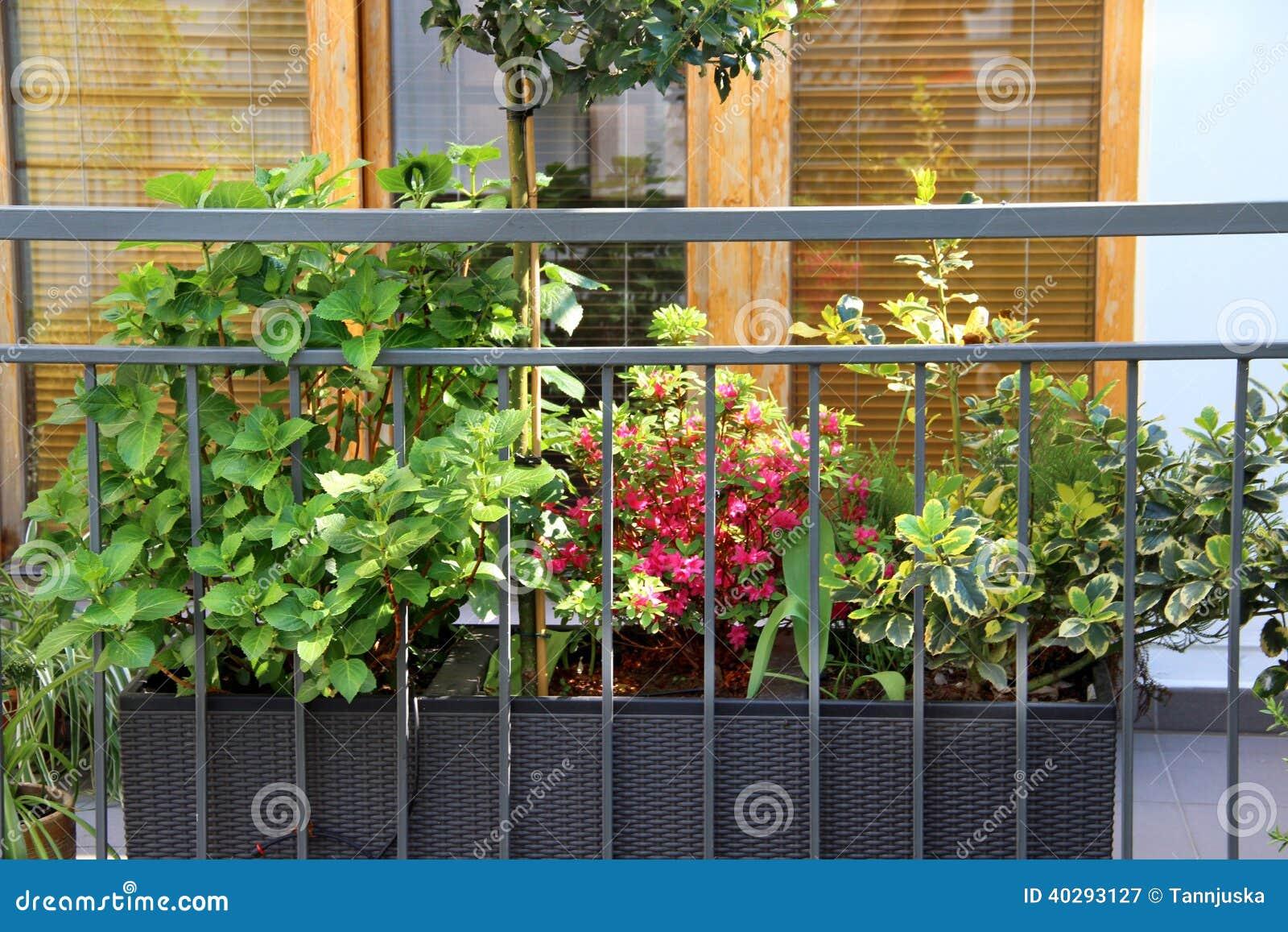 Красивая современная терраса с много цветками