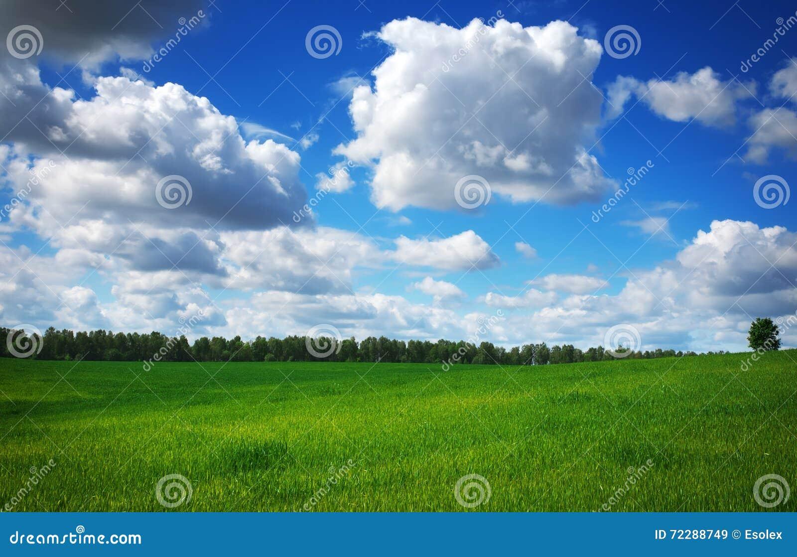 Download красивейшая весна ландшафта Стоковое Изображение - изображение насчитывающей красивейшее, countryside: 72288749