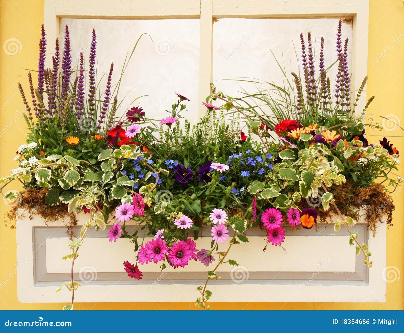 Композиции для балкона / садоводство, дача / ландшафтный диз.