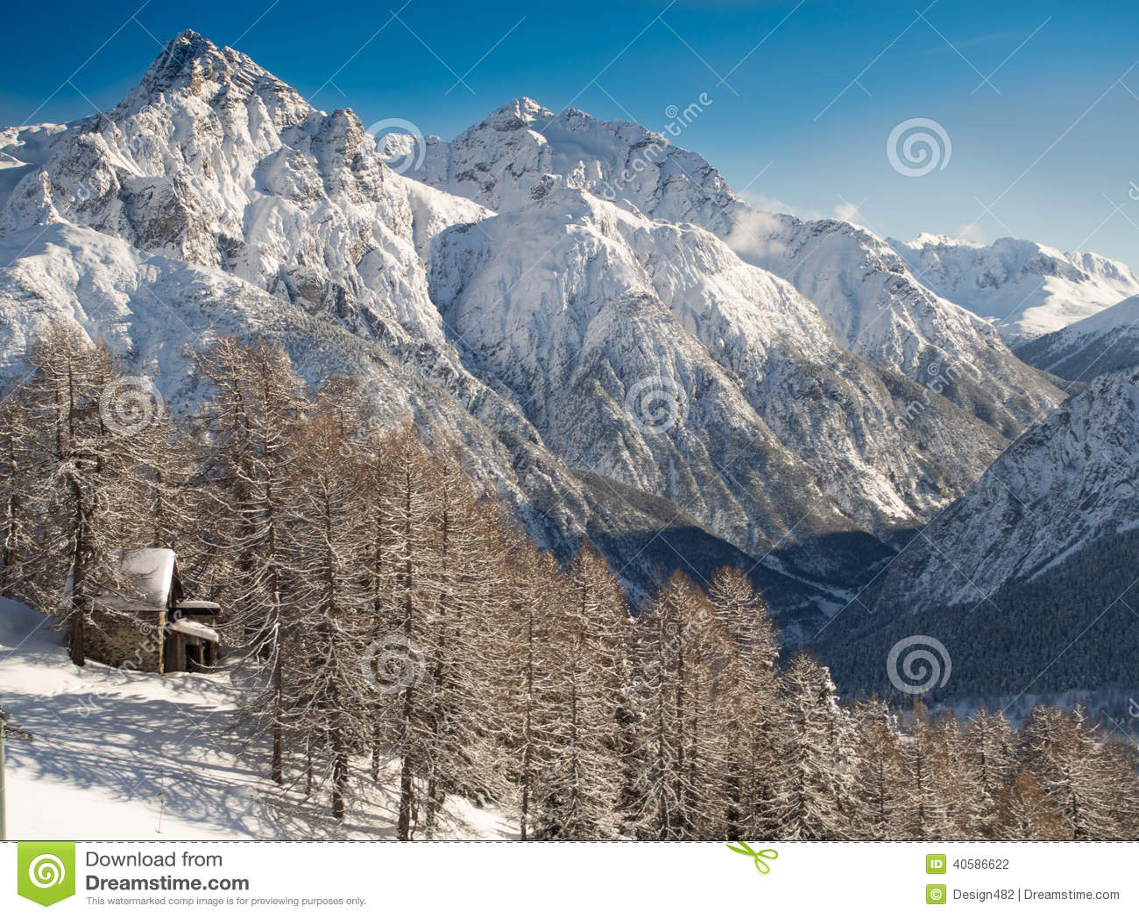 Красивейшее изображение зимы landscape