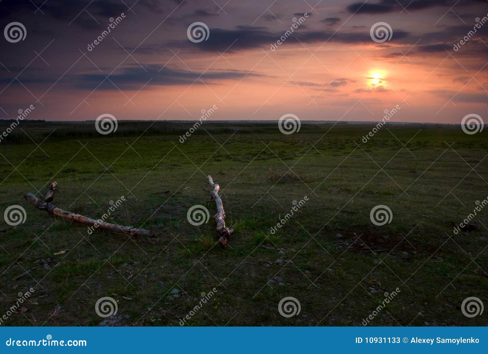 красивейшее поле над заходом солнца