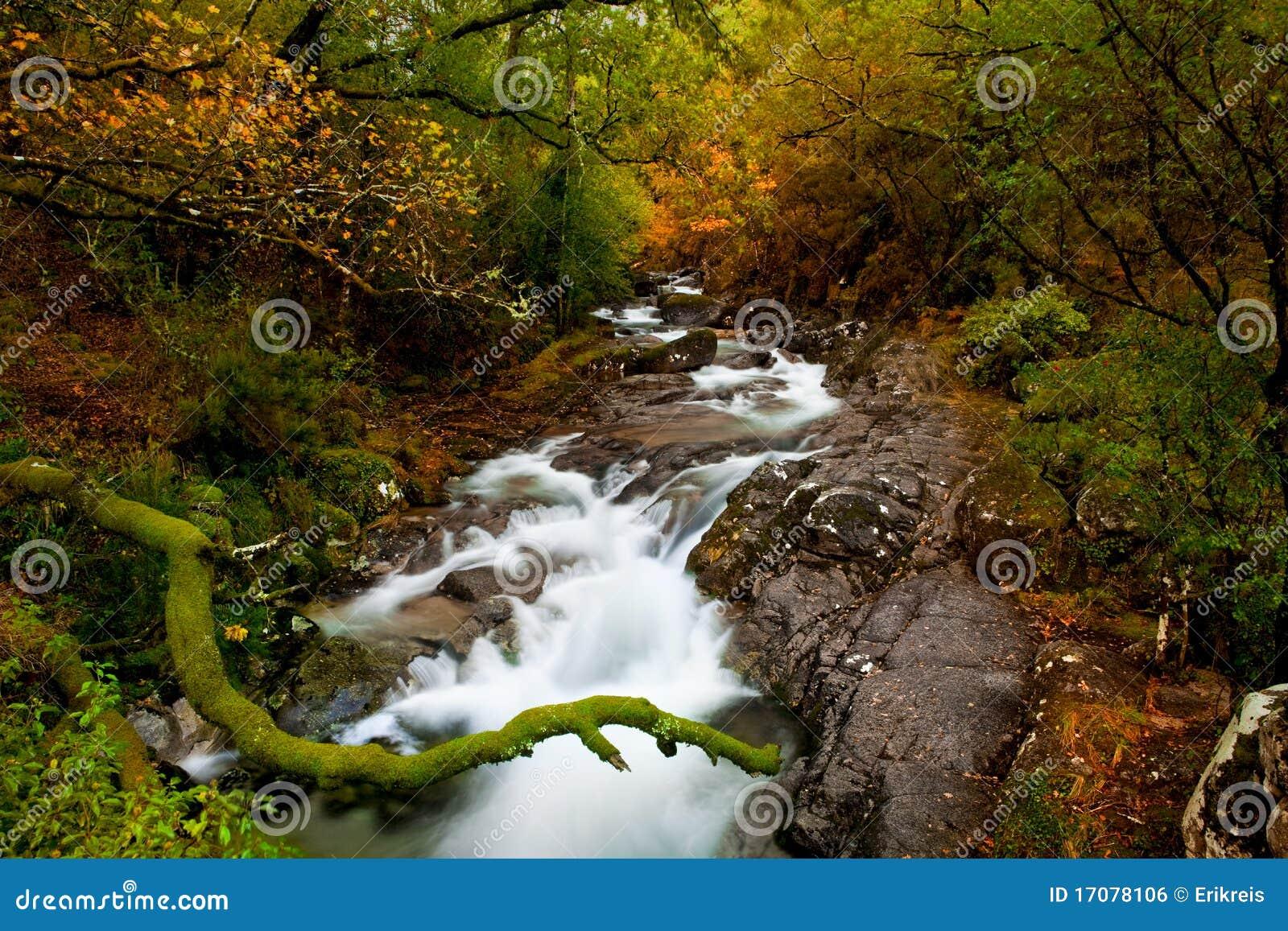красивейшее река