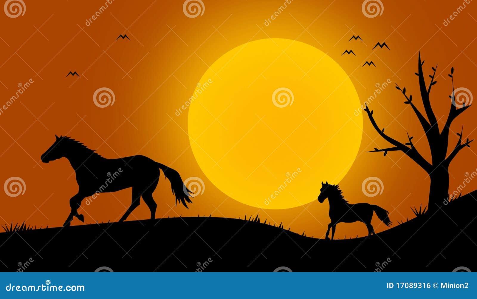 красивейшие черные силуэты лошади