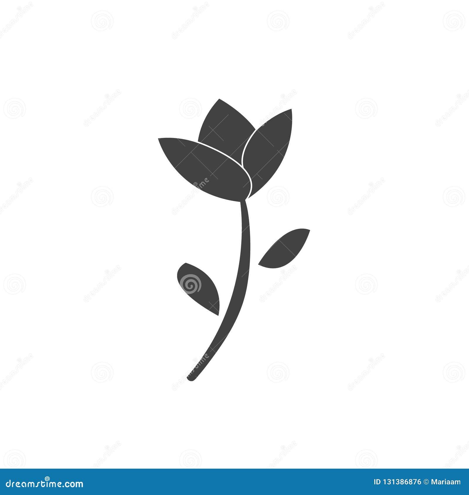 красивейший близкий тюльпан цветка вверх Плоский значок дизайна Изолировано над белизной