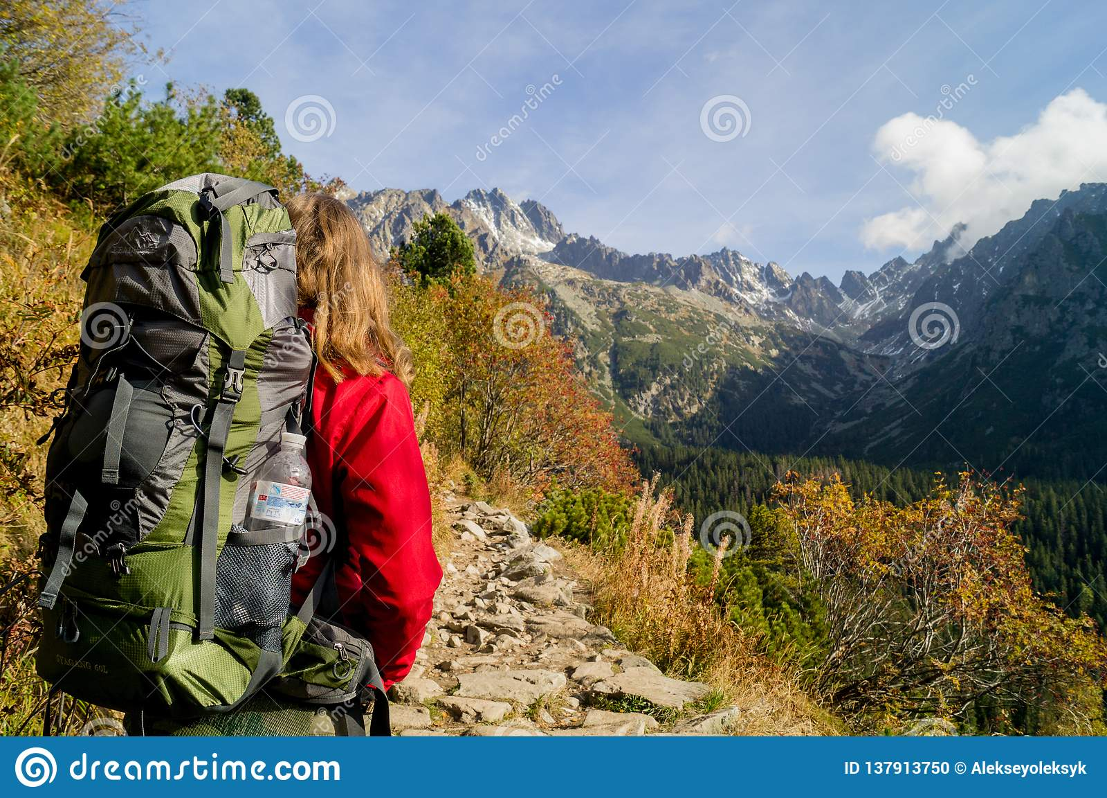 красивейший путешественник Парк Tatransky narodny tatry vysoke Словакия
