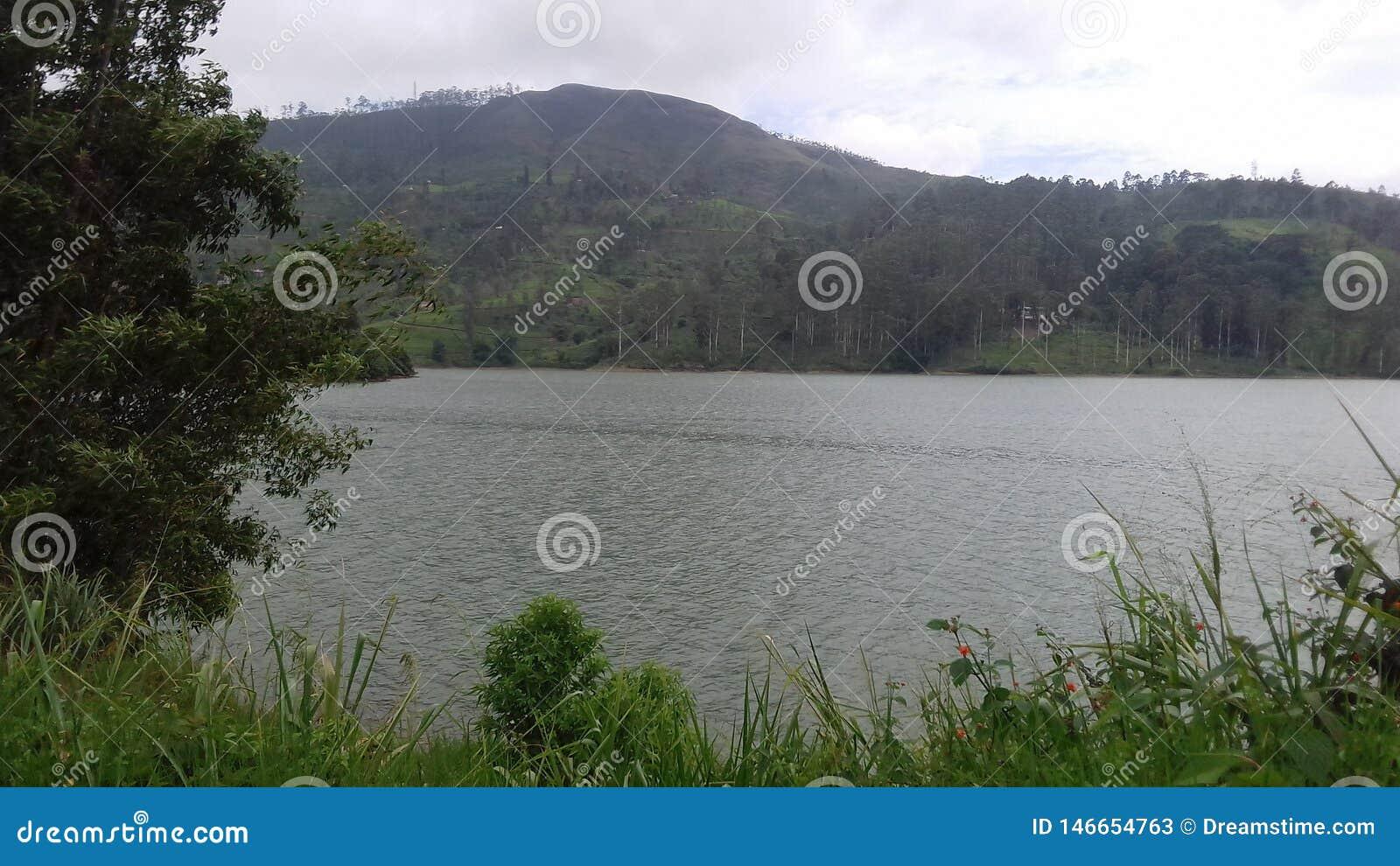 Красивое шриланкийск озеро на Канди