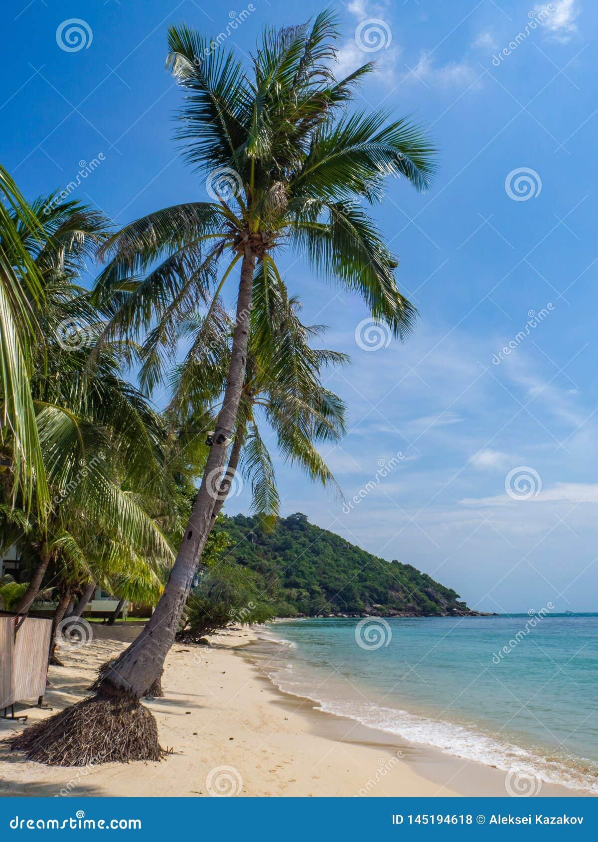 Красивые изображения песчаных пляжей на Koh Phangan