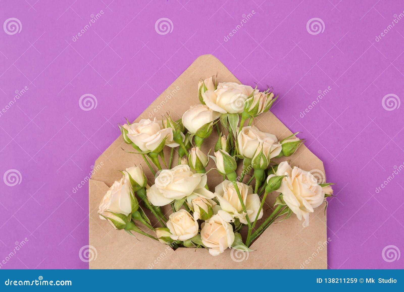 Красивые мини розы в конверте на яркой пурпурной предпосылке праздники Валентайн дня s женщины дня s Взгляд сверху