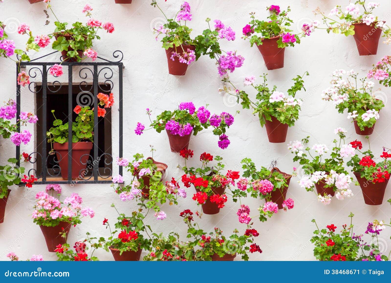 Красивые окно и стена украсили цветки - старый европейский городок,