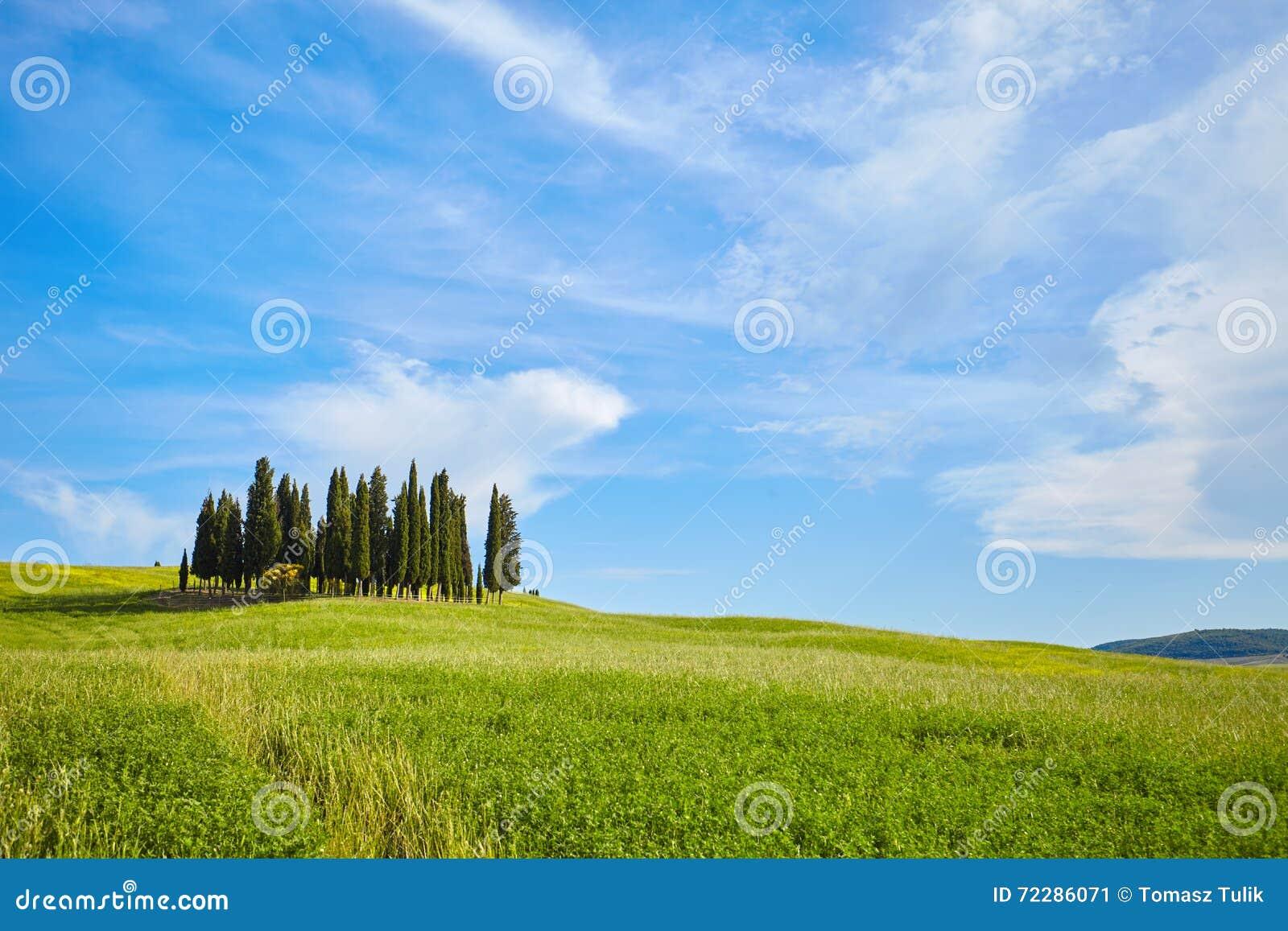 Download Красивые цвета весны в Тоскане Стоковое Изображение - изображение насчитывающей aiders, страна: 72286071