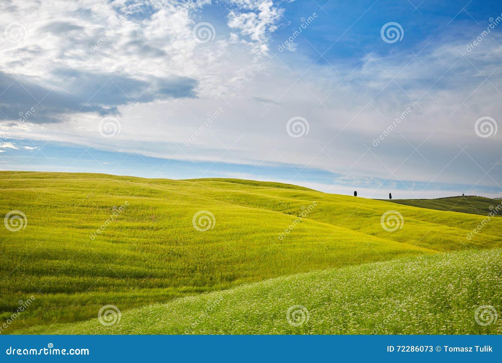 Download Красивые цвета весны в Тоскане Стоковое Изображение - изображение насчитывающей мирно, природа: 72286073