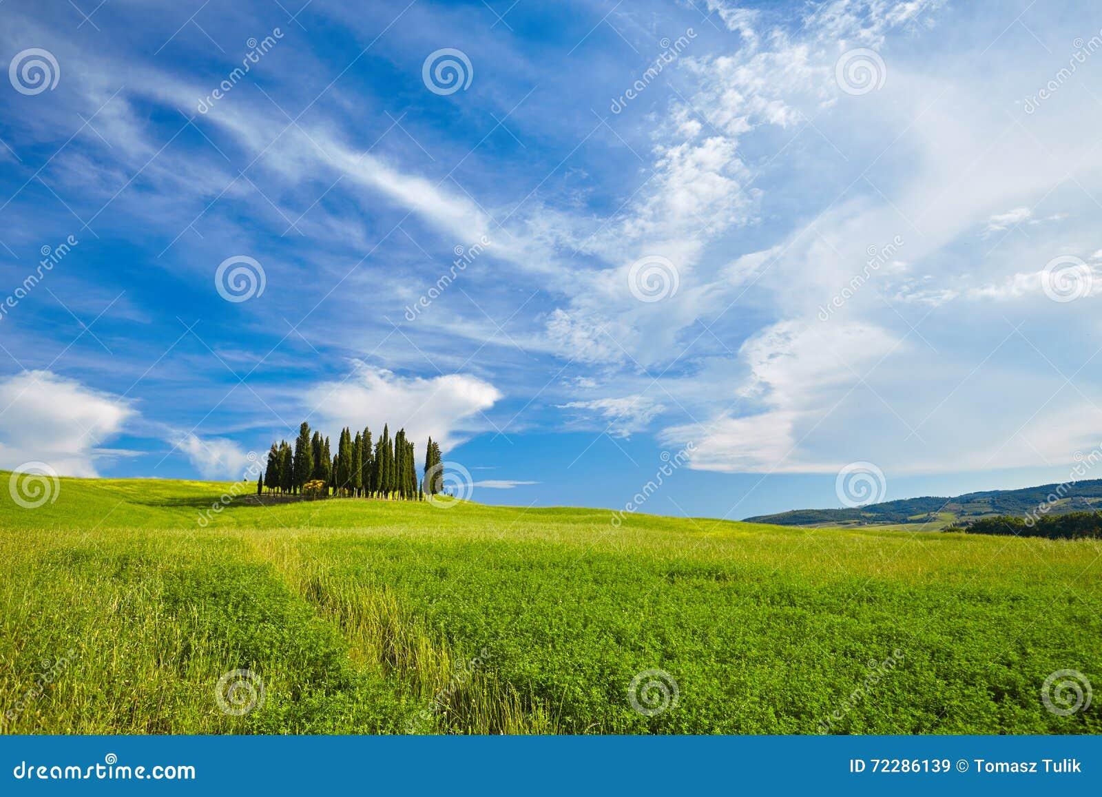Download Красивые цвета весны в Тоскане Стоковое Изображение - изображение насчитывающей кипарис, облако: 72286139