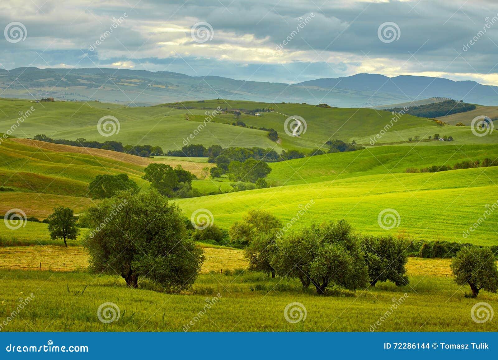 Download Красивые цвета весны в Тоскане Стоковое Фото - изображение насчитывающей изумлять, кипарис: 72286144