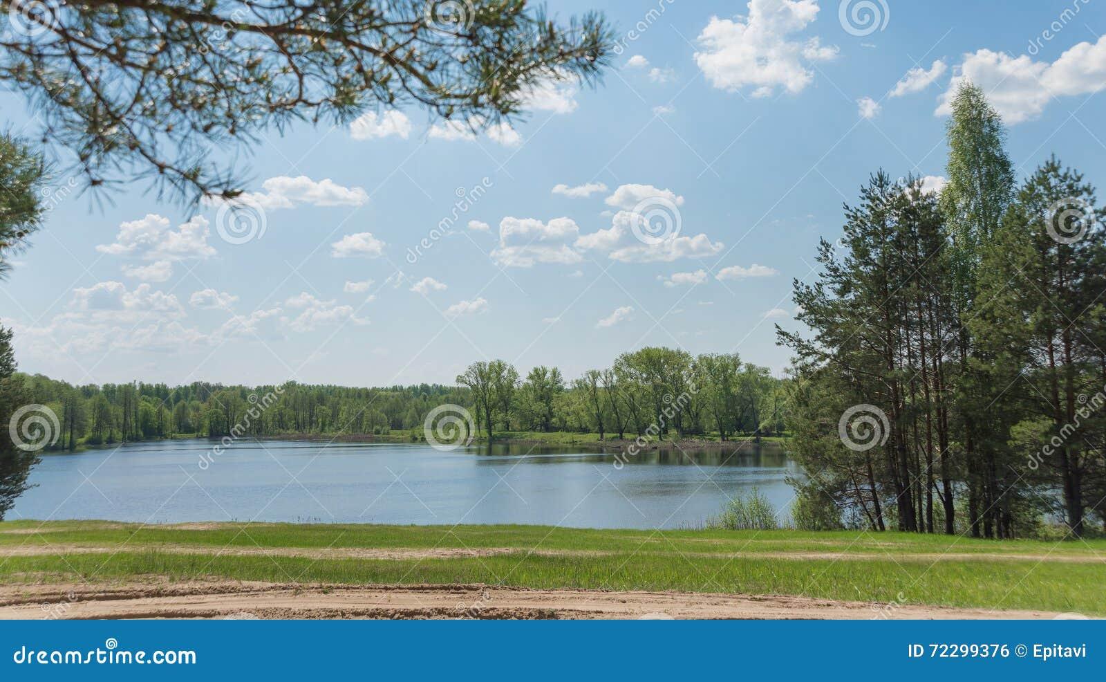 Download Красивый ландшафт с озером стоковое фото. изображение насчитывающей сосенка - 72299376