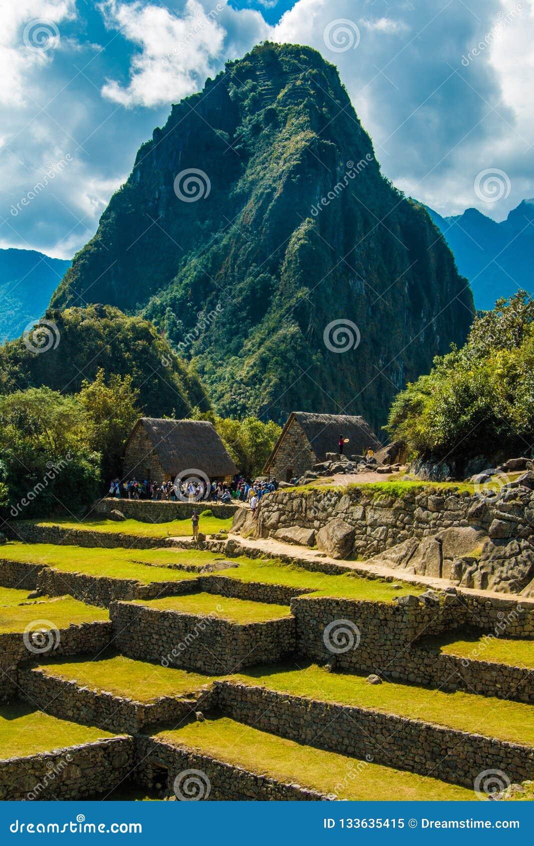 Красивый взгляд руин Machu Picchu