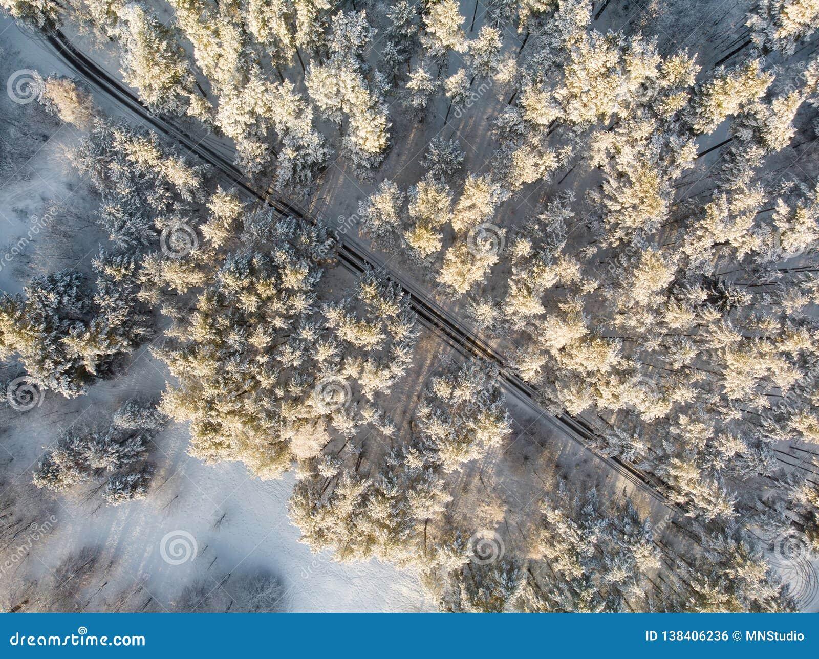Красивый вид с воздуха сосновых лесов покрытых снегом и замотка дороги среди деревьев Рифмуют лед и налет инея покрывая деревья З