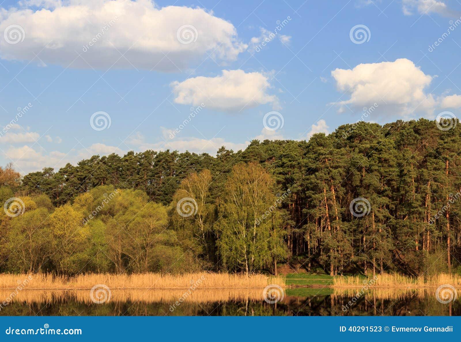 Красивый естественный ландшафт
