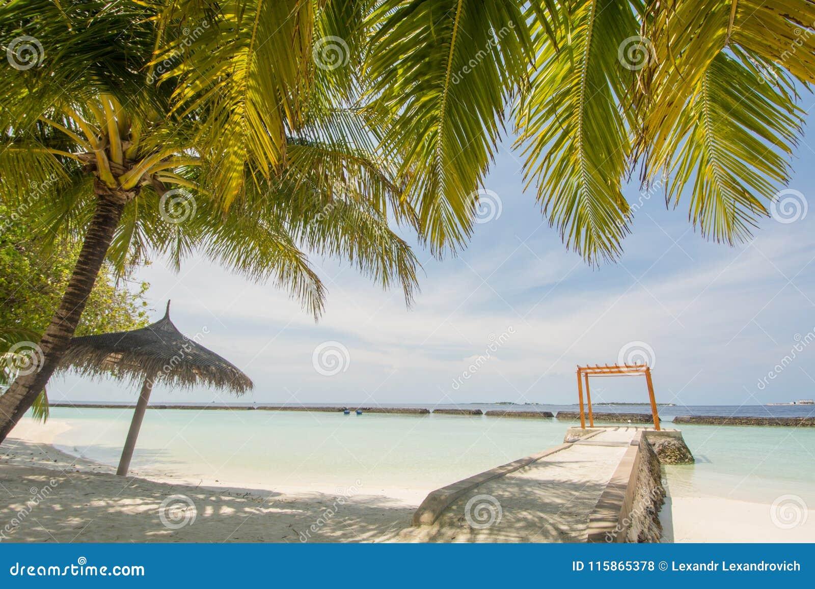 Красивый изумительный тропический взгляд ландшафта пляжа лета с океаном, голубым небом, cabana на острове на курорте
