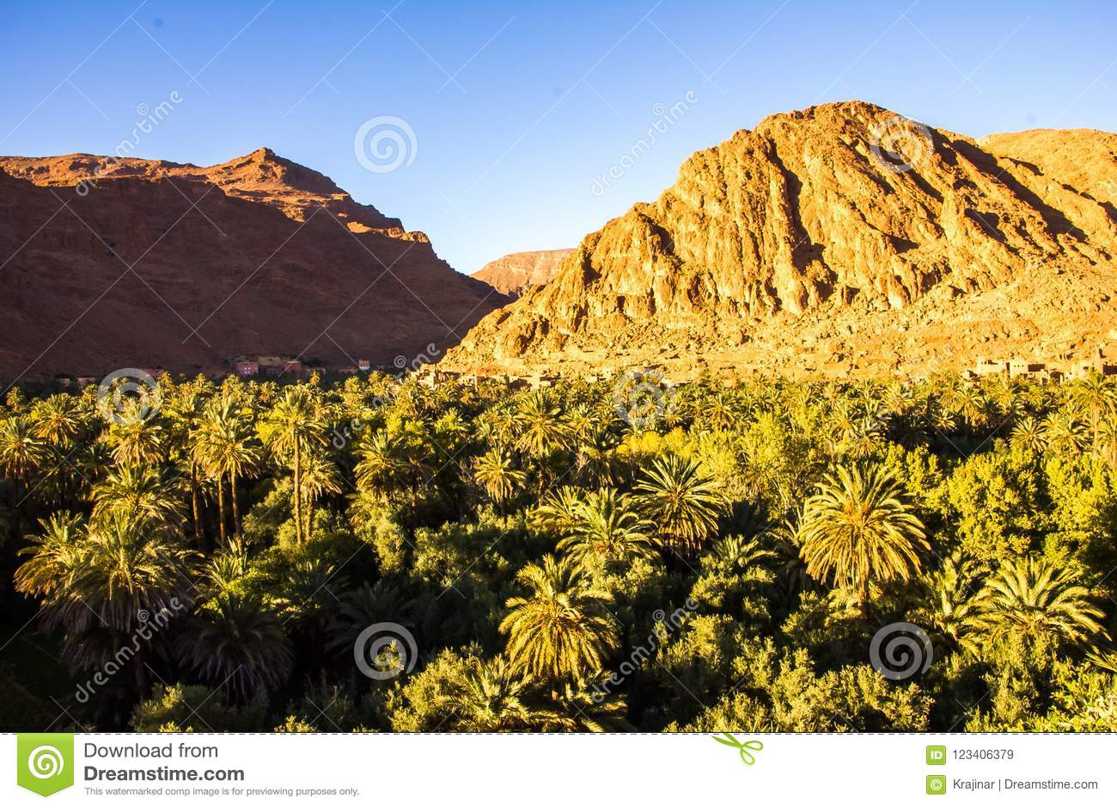 Красивый ландшафт оазиса ладони близко к Tinghir, Марокко, Afr