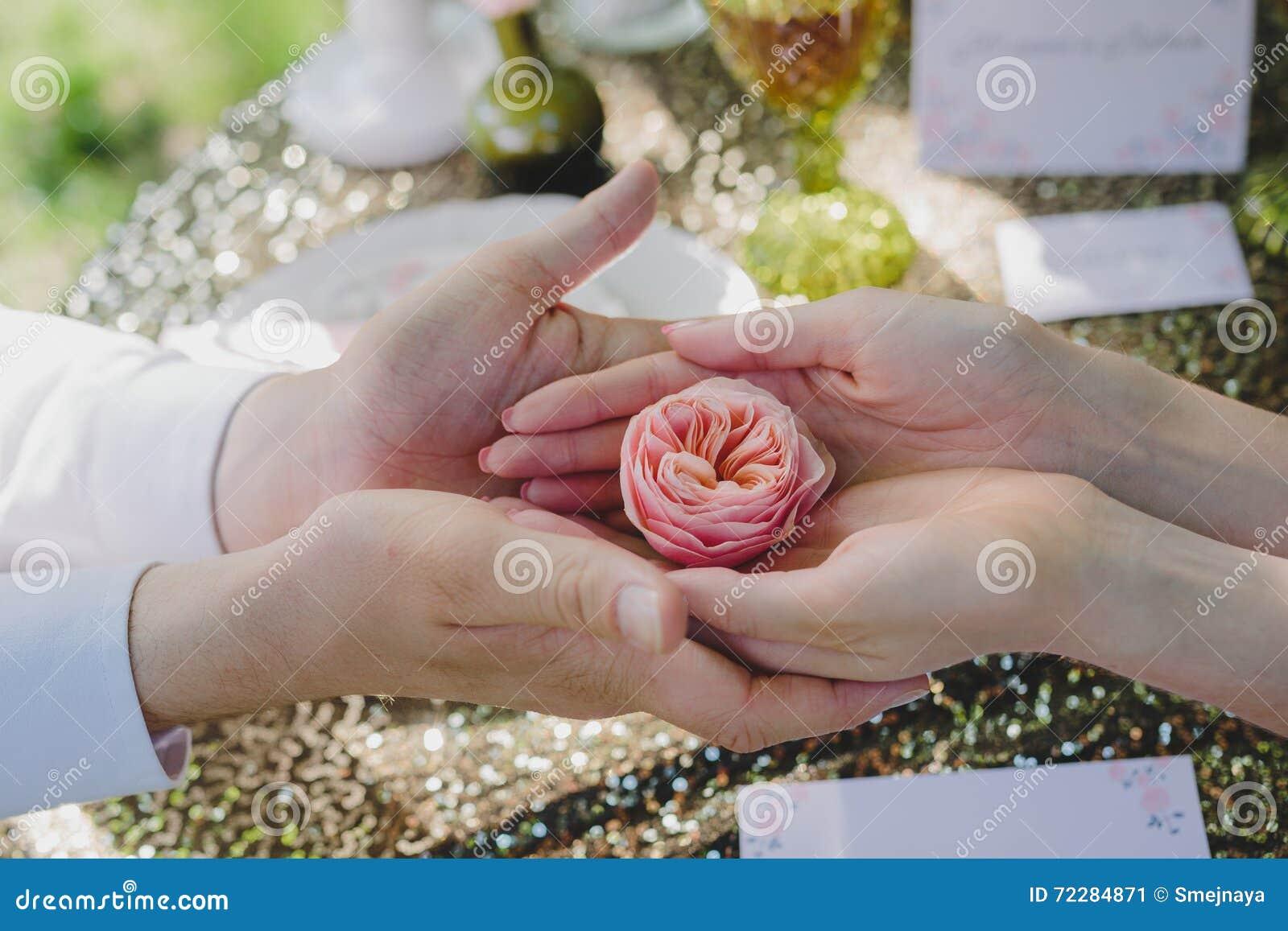 Download Красивый розовый цветок в руках пар а Стоковое Изображение - изображение насчитывающей весна, красивейшее: 72284871