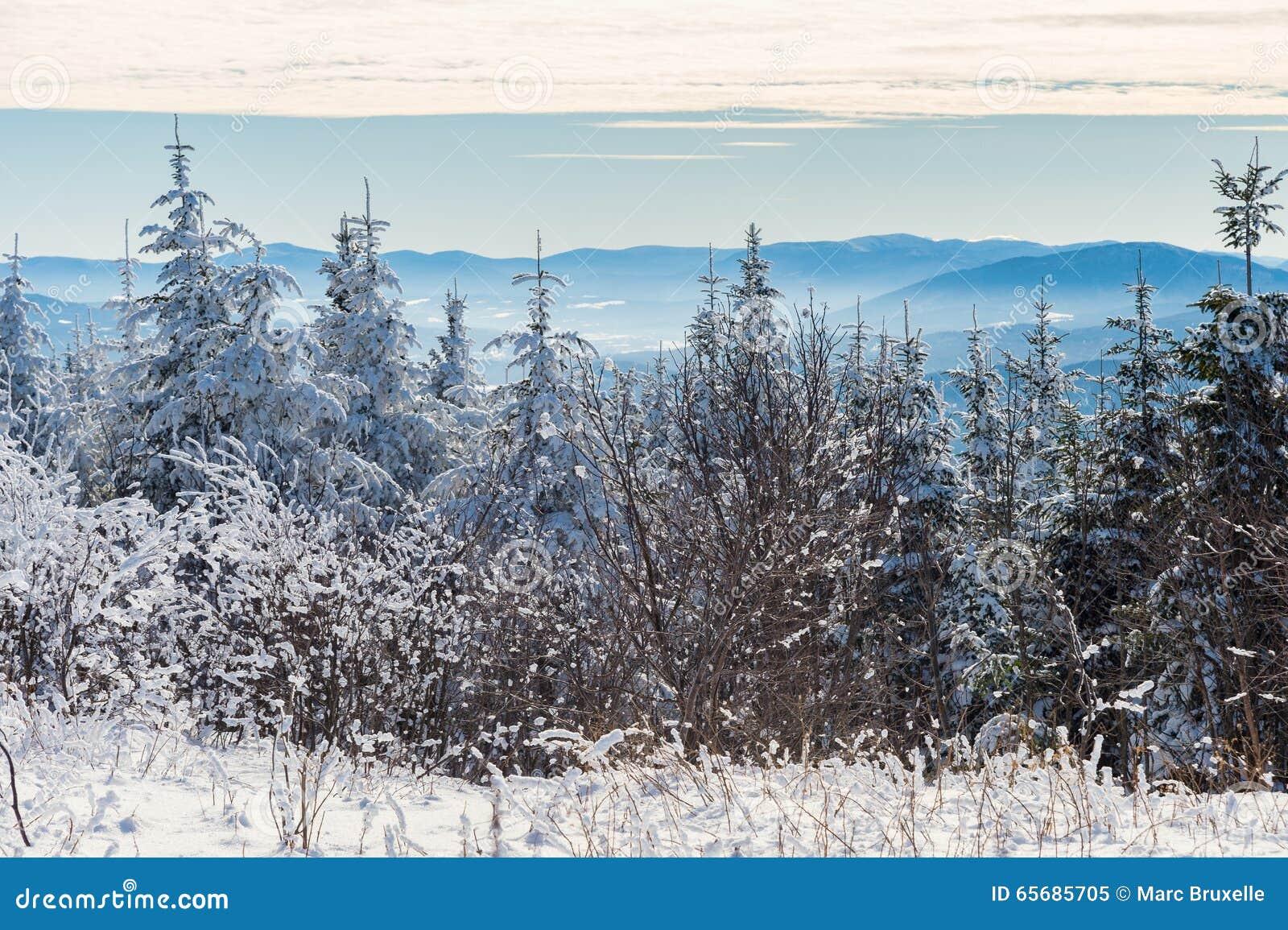 Красивый снежный ландшафт в Квебеке, Канаде