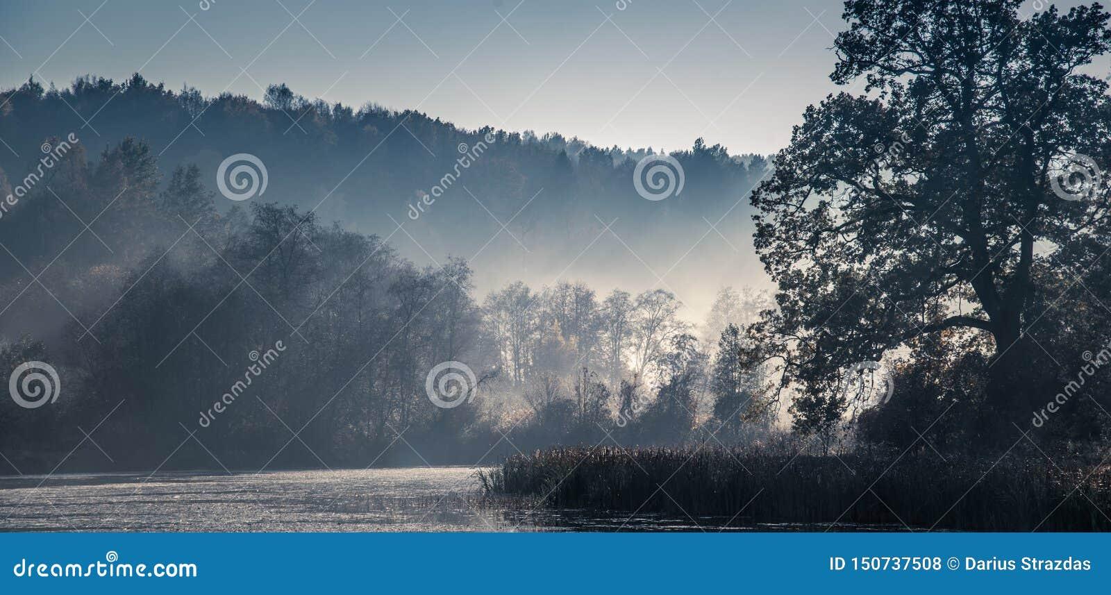 Красивый сценарный ландшафт природы
