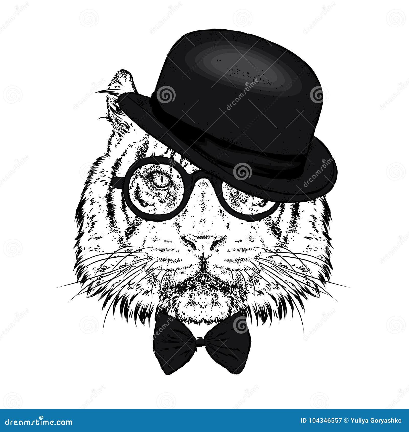 Красивый тигр с шляпой и стеклами также вектор иллюстрации притяжки corel Дикое животное, хищник