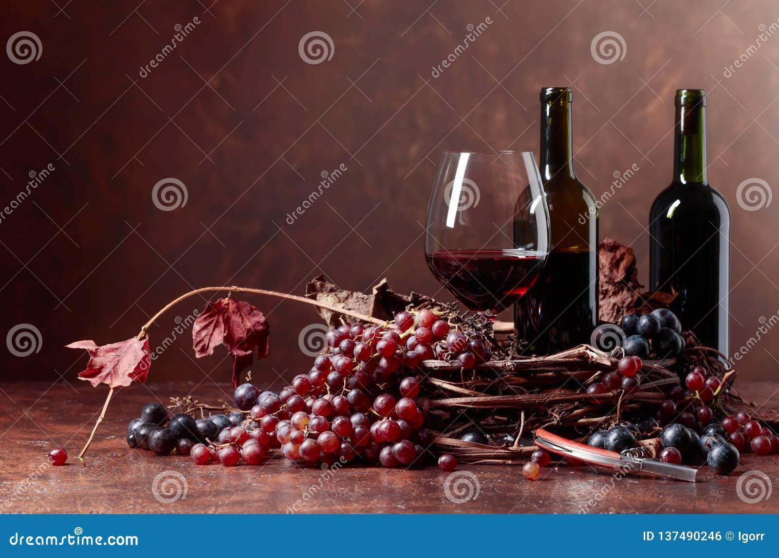 Красное вино и свежие виноградины с высушенный вверх по лозе выходят
