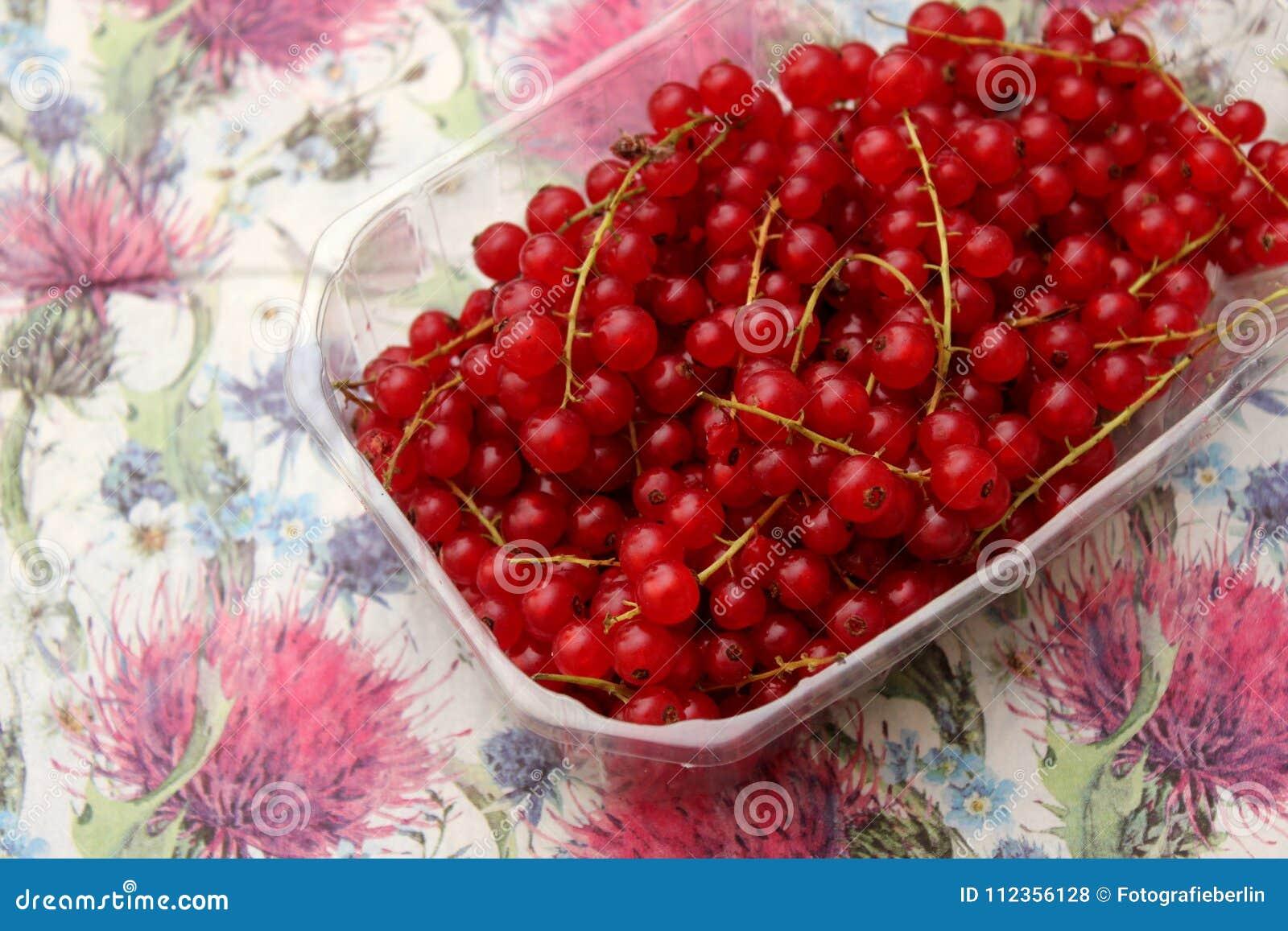 Красные смородины