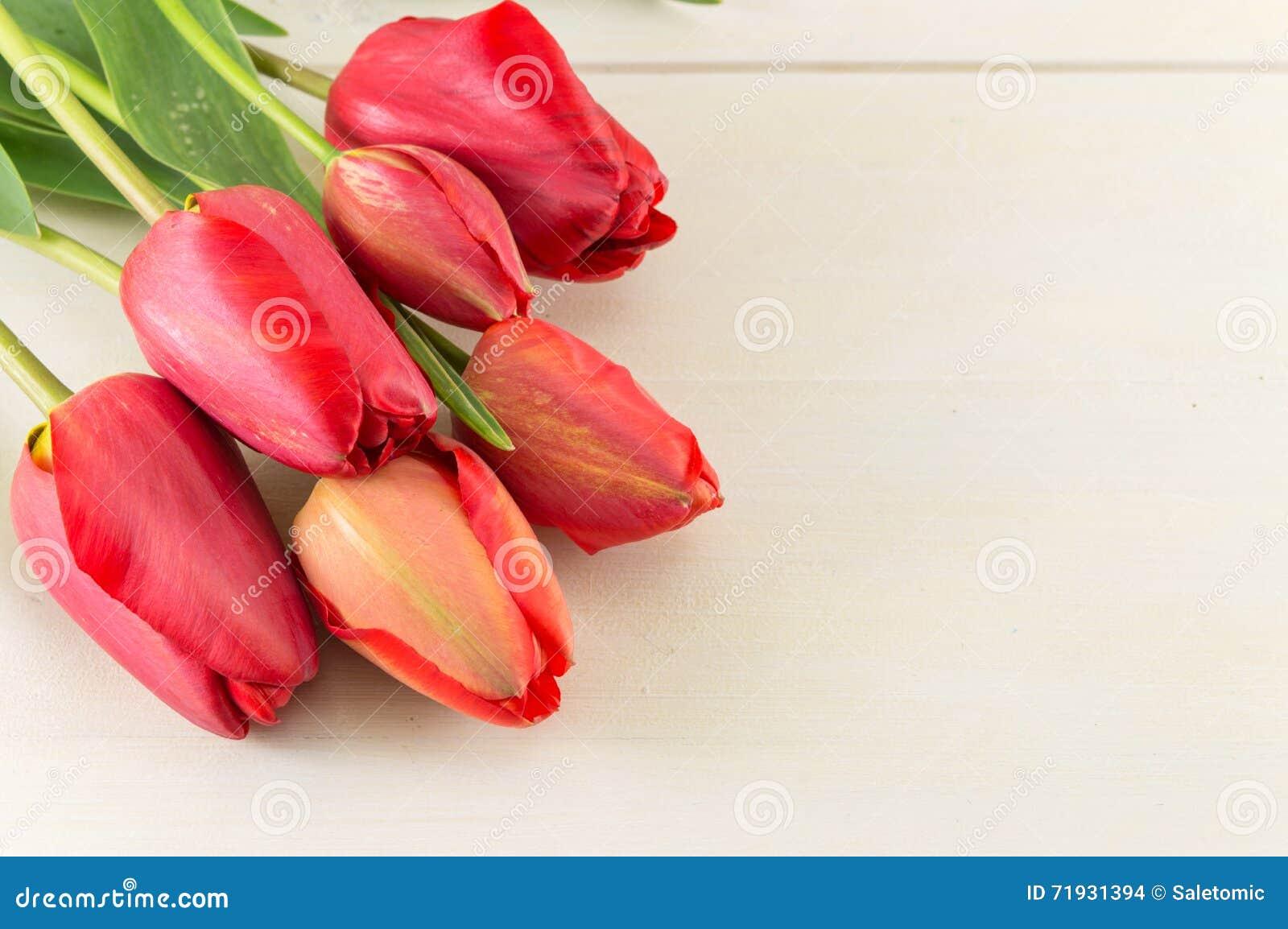 Красные тюльпаны на белой доске
