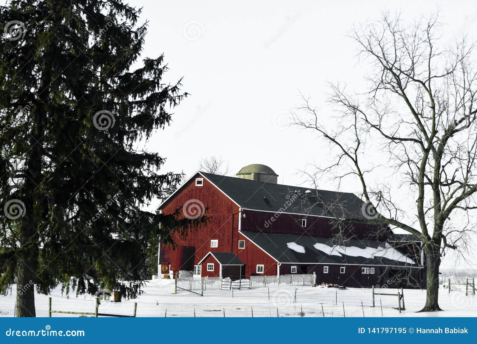 Красный амбар в зиме со снегом