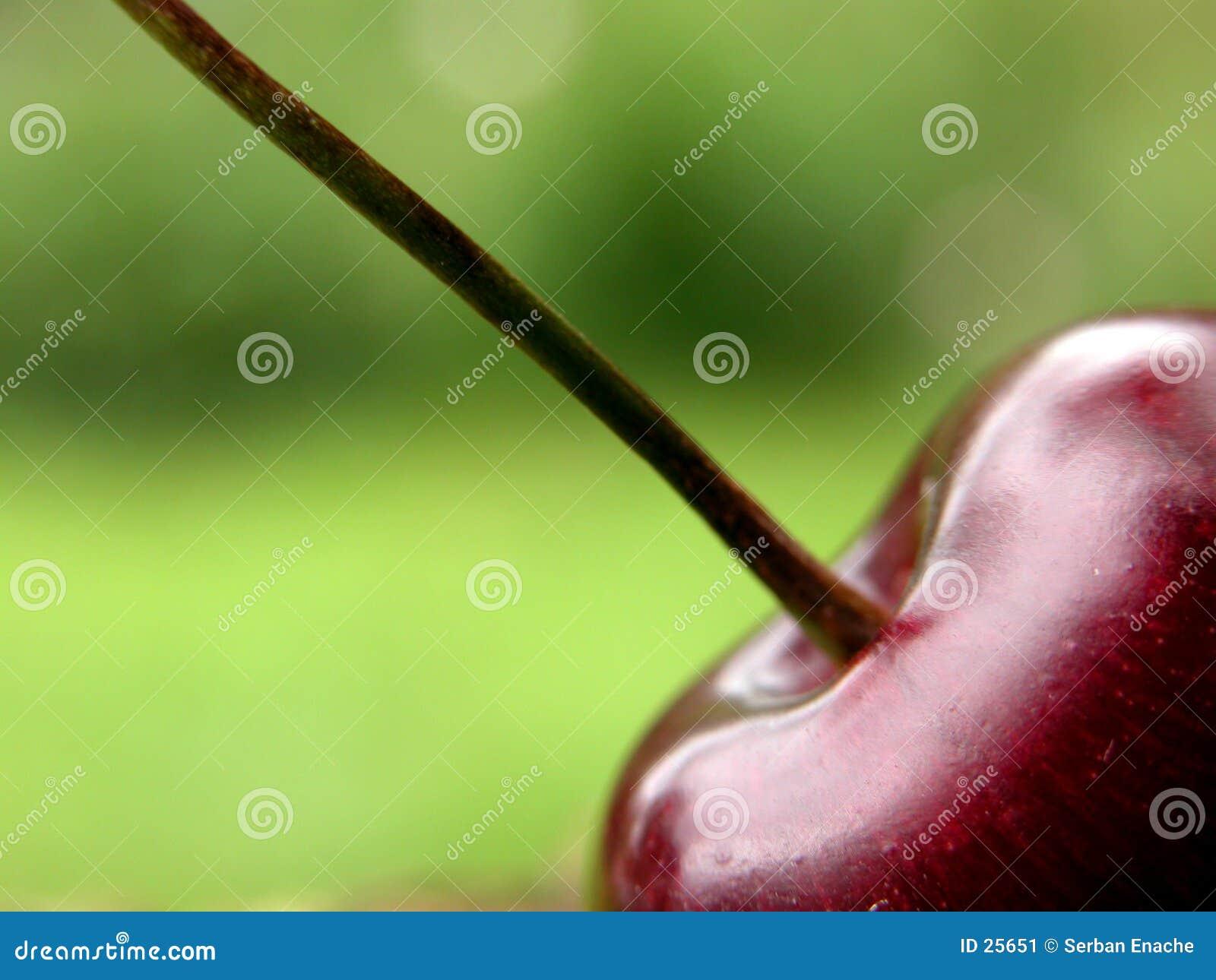 красный цвет вишни