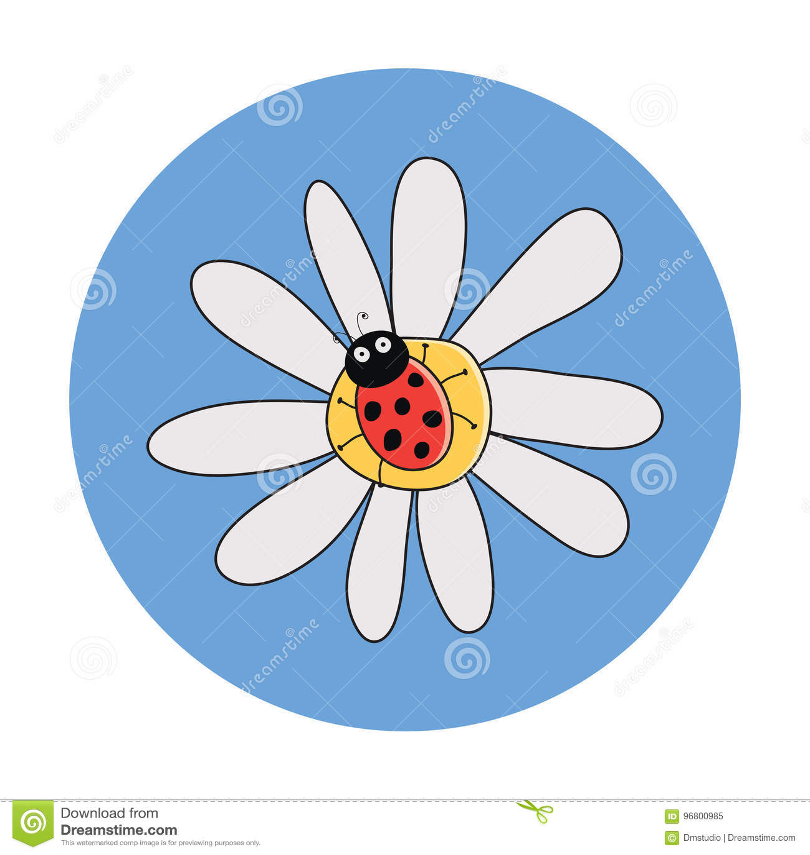 Красный ladybird на цветке стоцвета