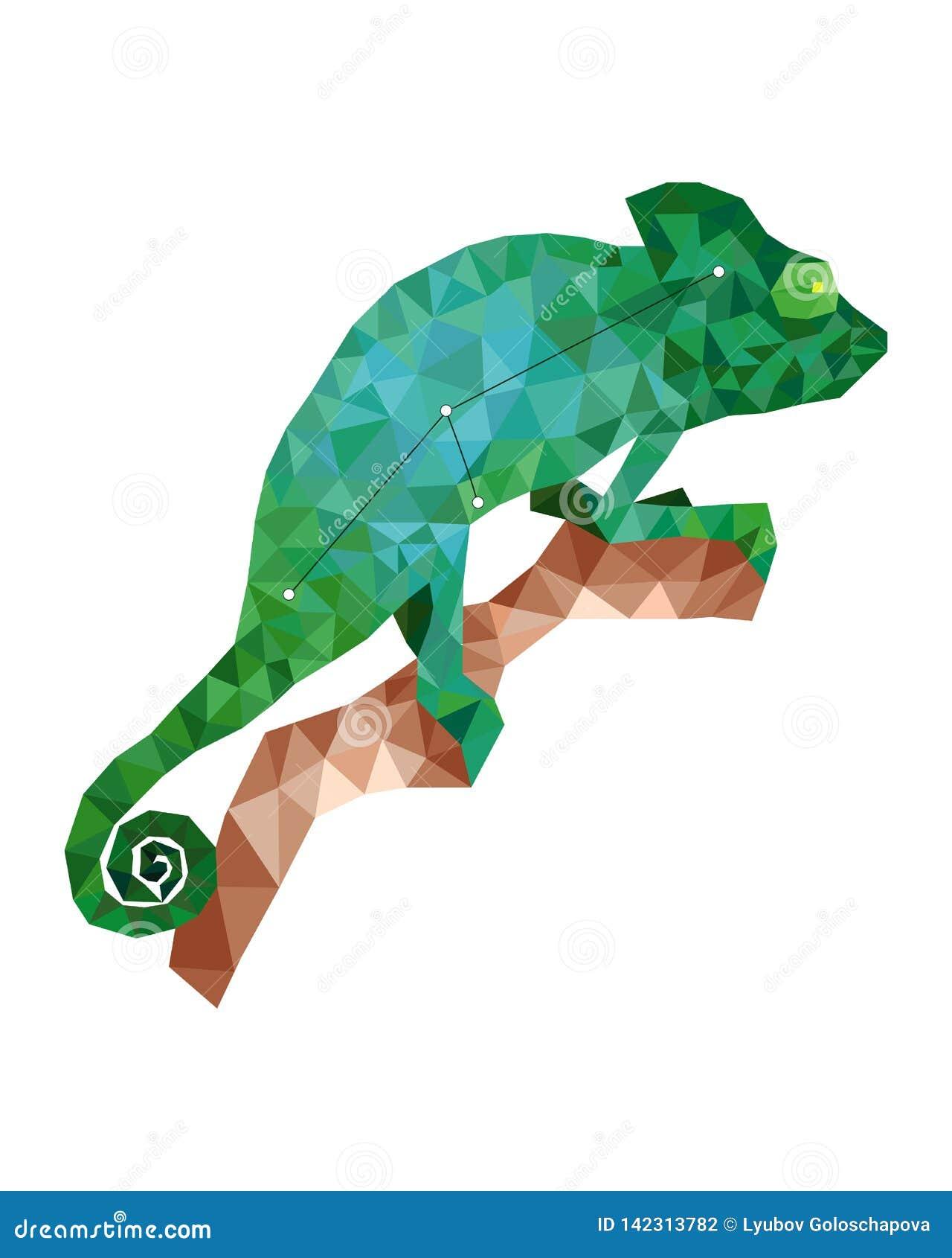 Красочная диаграмма хамелеон зеленого цвета artof в полигональном стиле