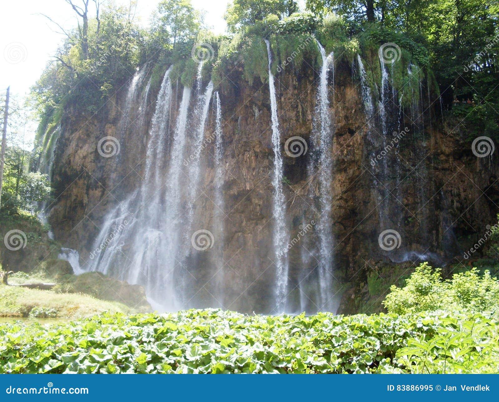 Красочный и живой ландшафт берега озера Спокойный ландшафт полезный как предпосылка Понизьте каньон озер Озера Plitvice националь