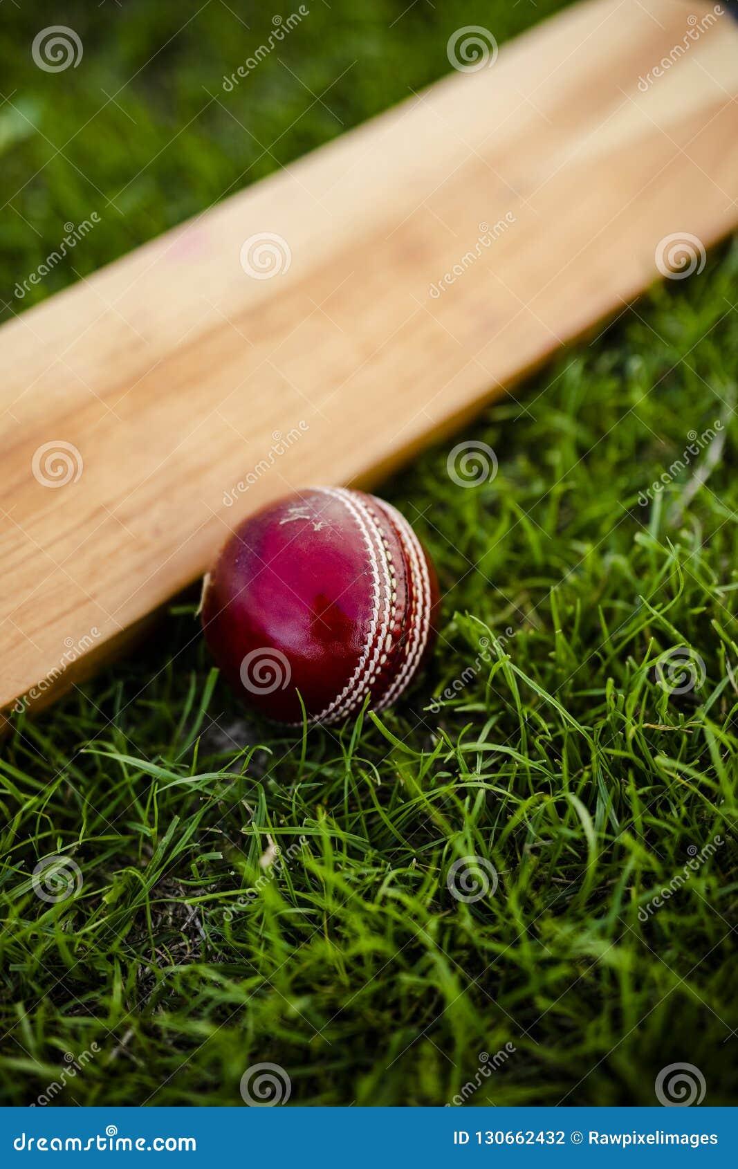 Крикетная бита и шарик на зеленой траве
