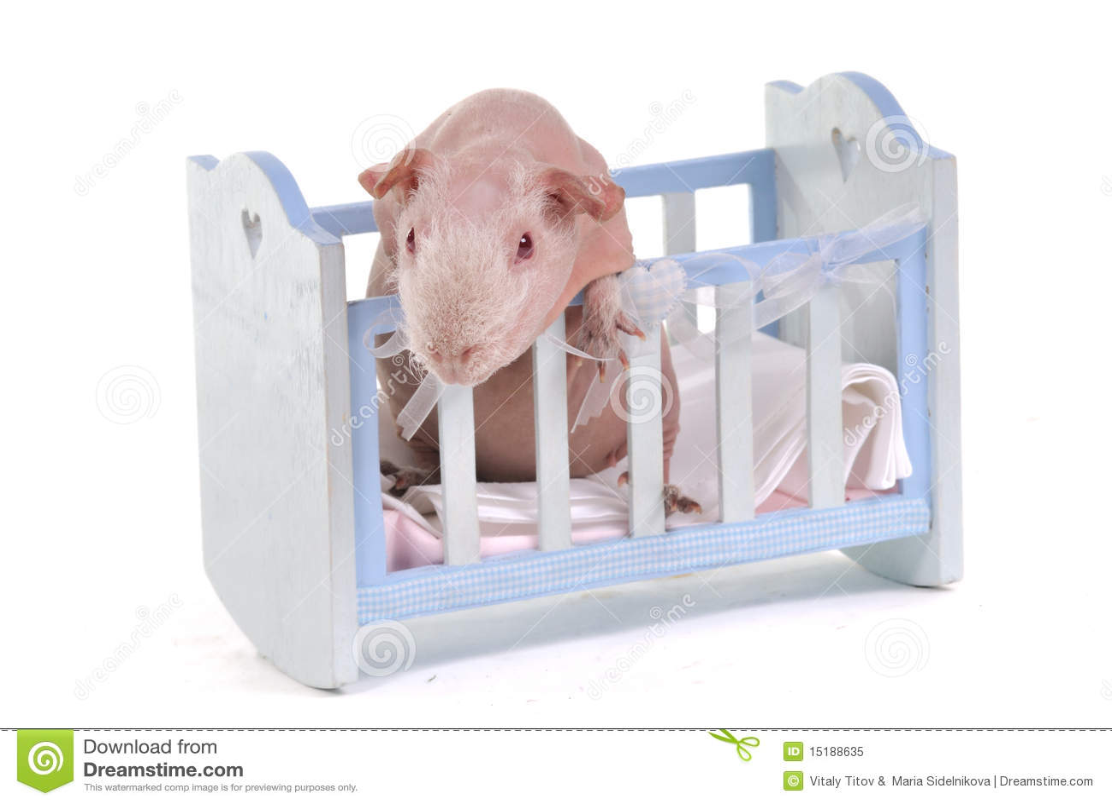 кроватка cavy младенца любознательная