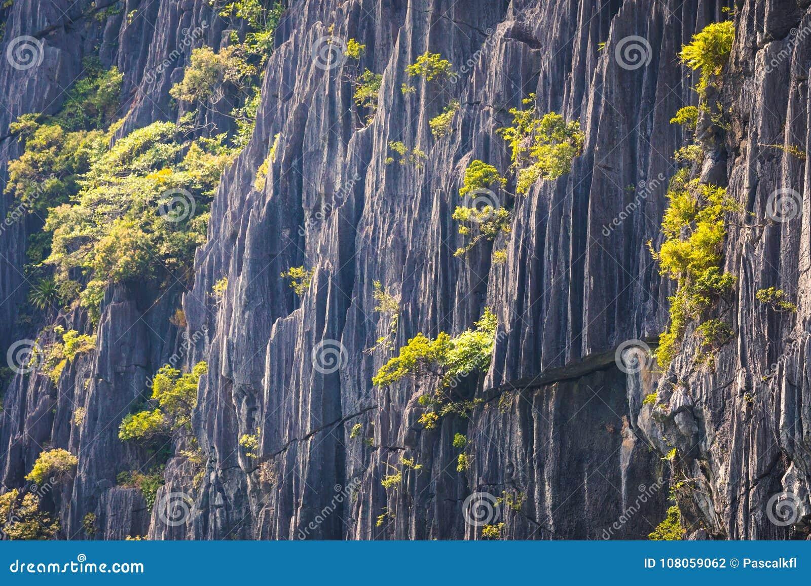 Крупный план горы karst, текстура утеса