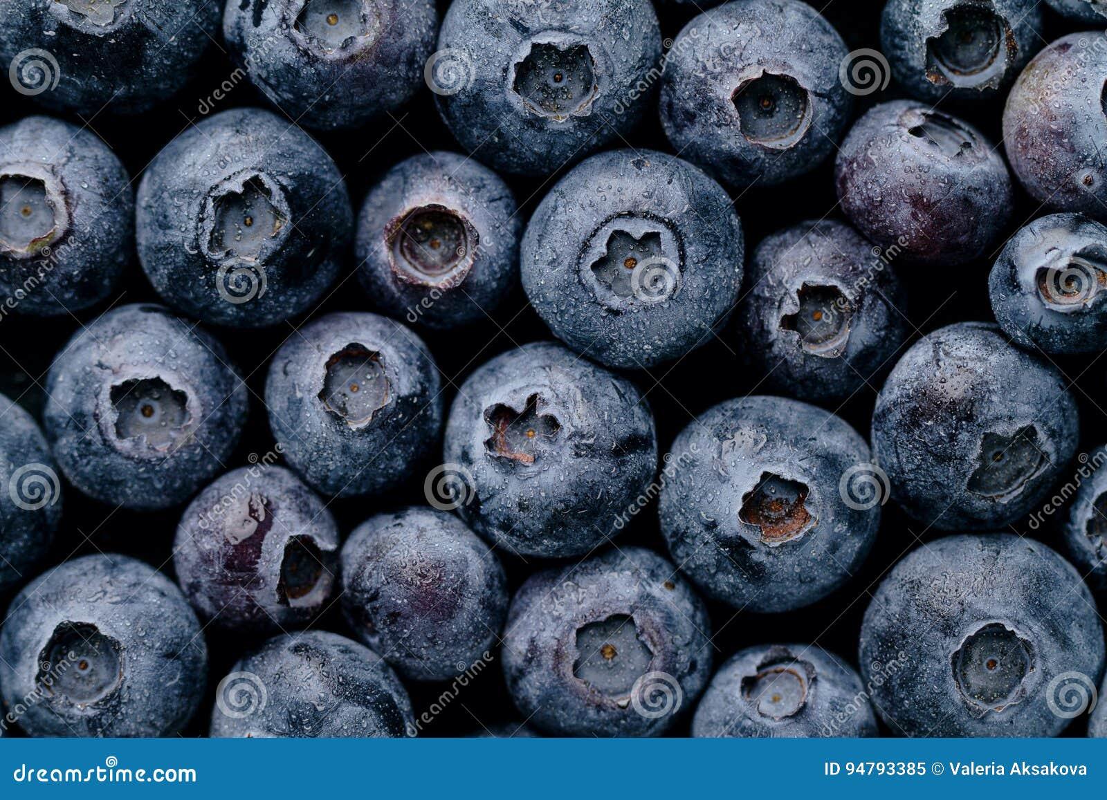 Крупный план макроса свежей вкусной ягоды голубики Еда лета Питание