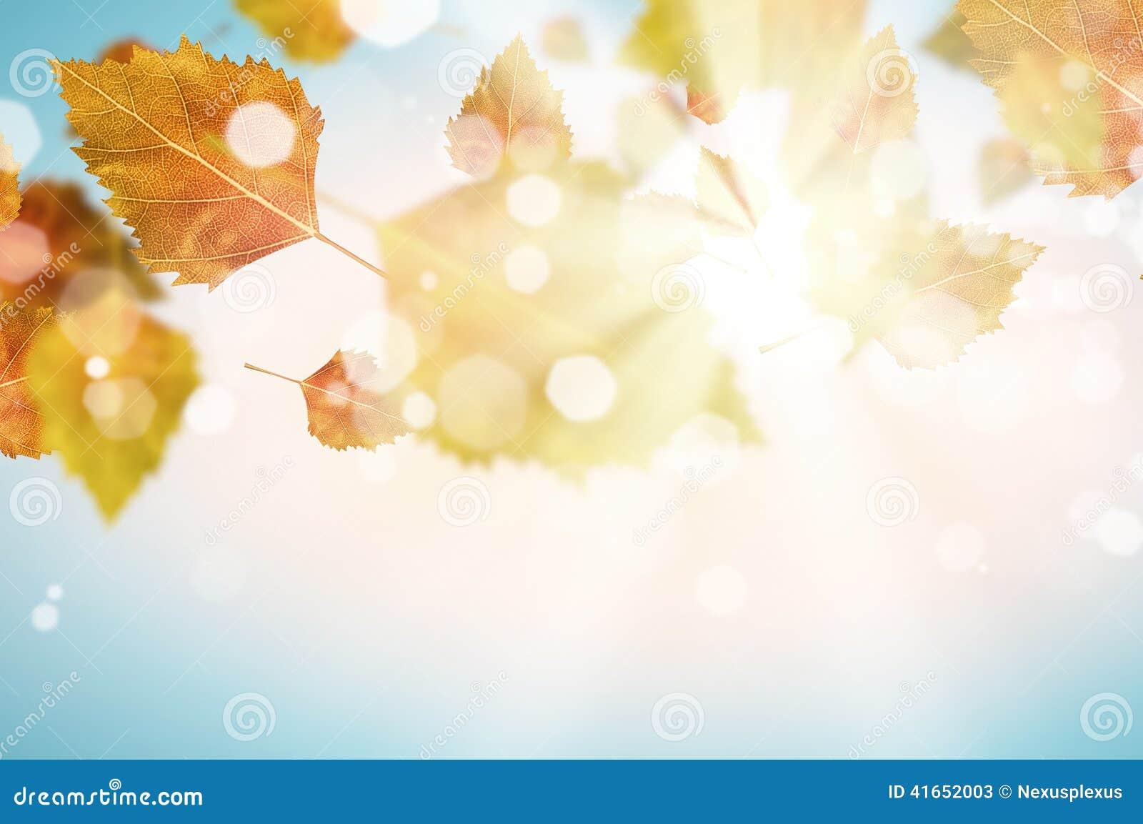 крупный план предпосылки осени красит красный цвет листьев плюща померанцовый