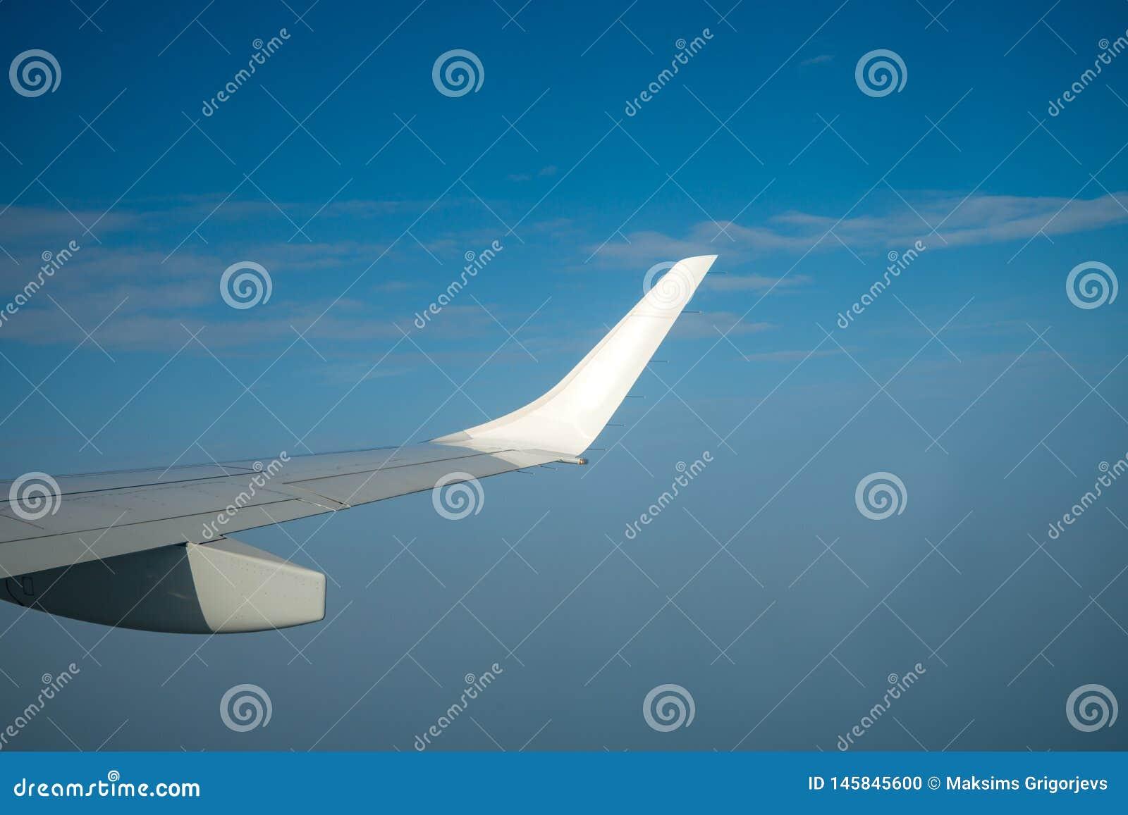Крыло воздуха простое над голубым солнечным небом