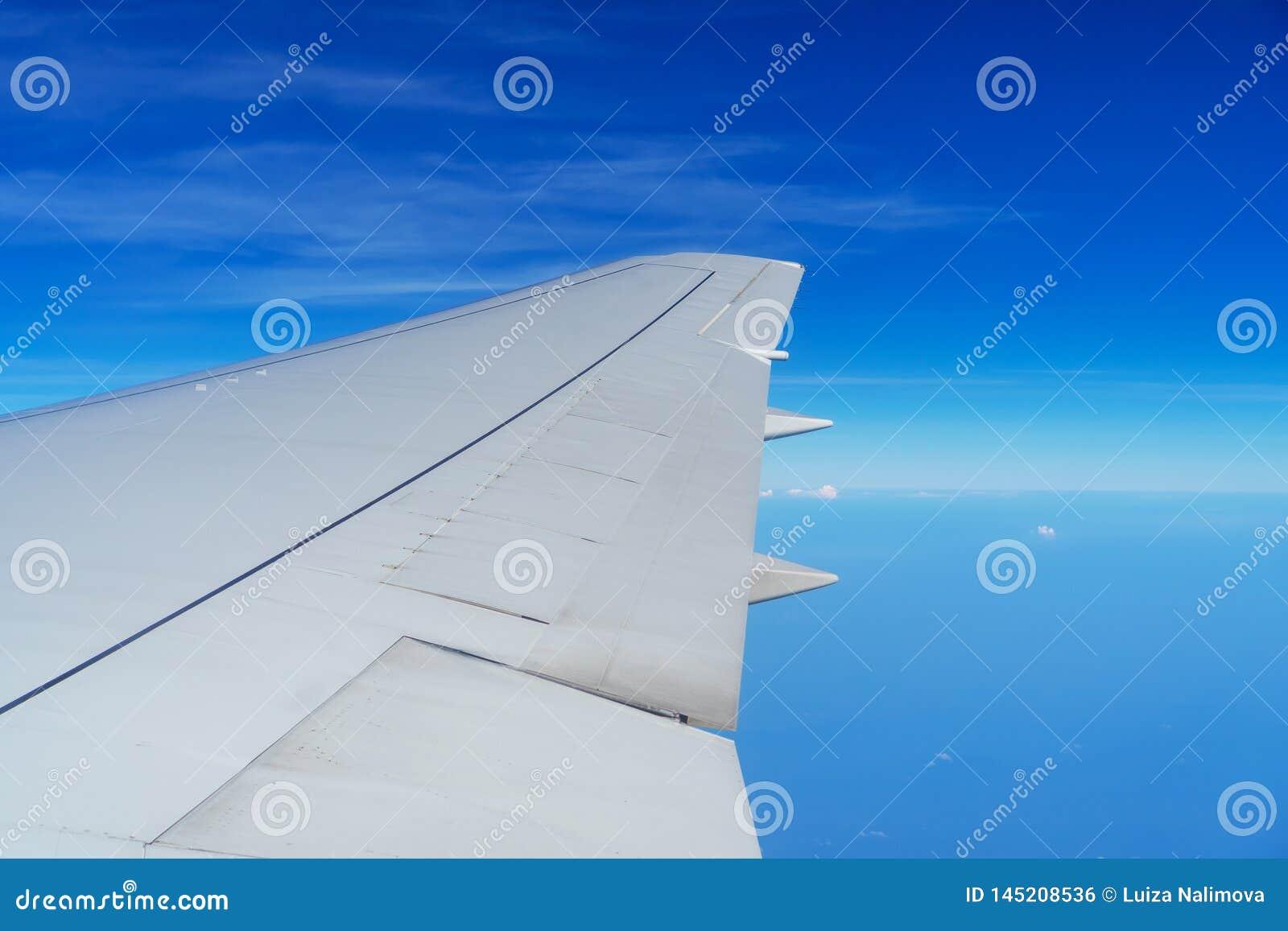 Крыло летания самолета